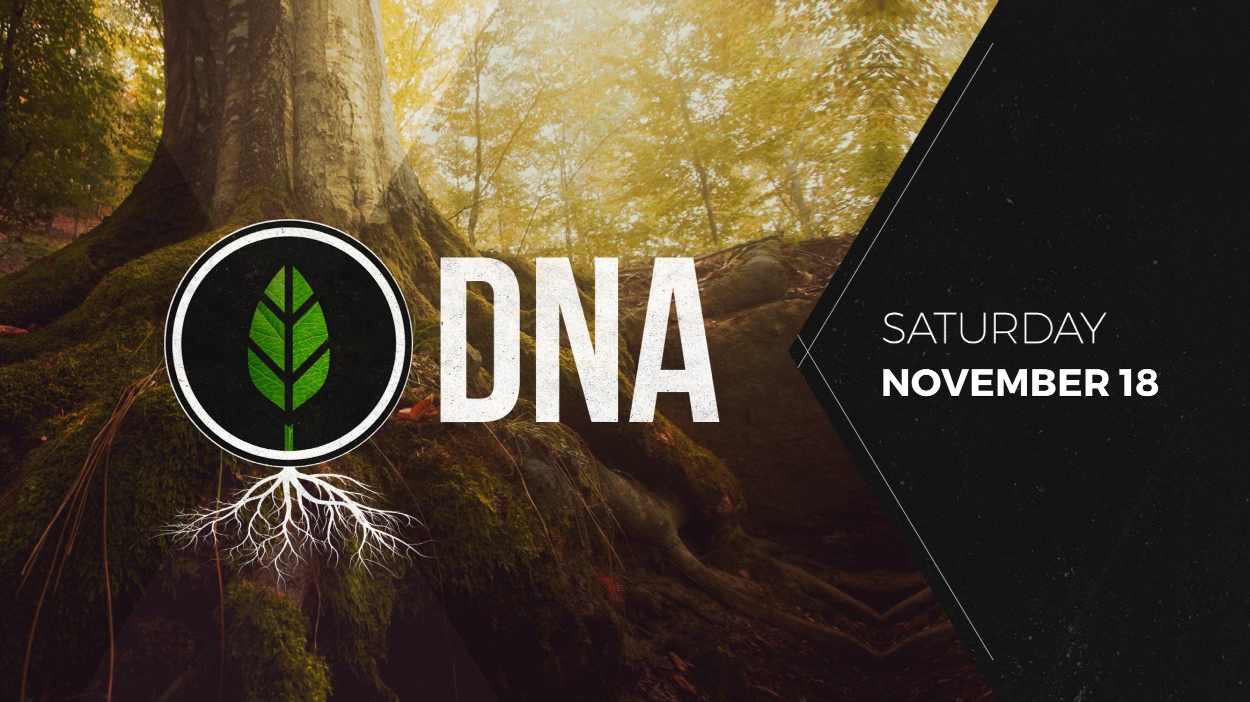 DNA - November.jpg