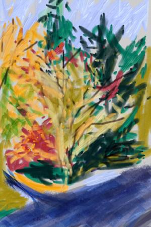 Trees on Walk: Sylvan Park Jan 2017 IPhone with Art Set