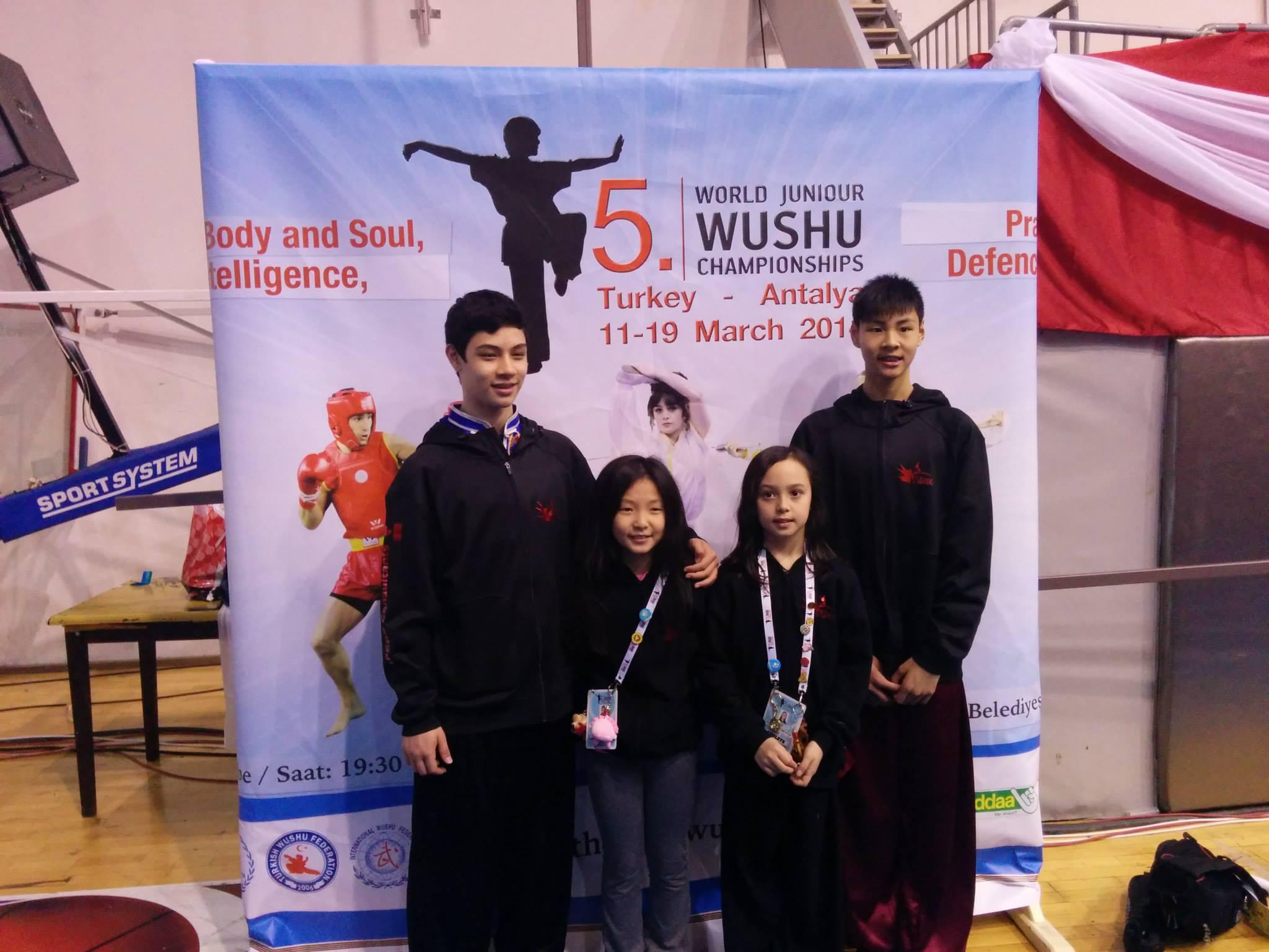 Wayland_Li_Wushu_World_Junior_Championships_2014_Turkey_3.jpg