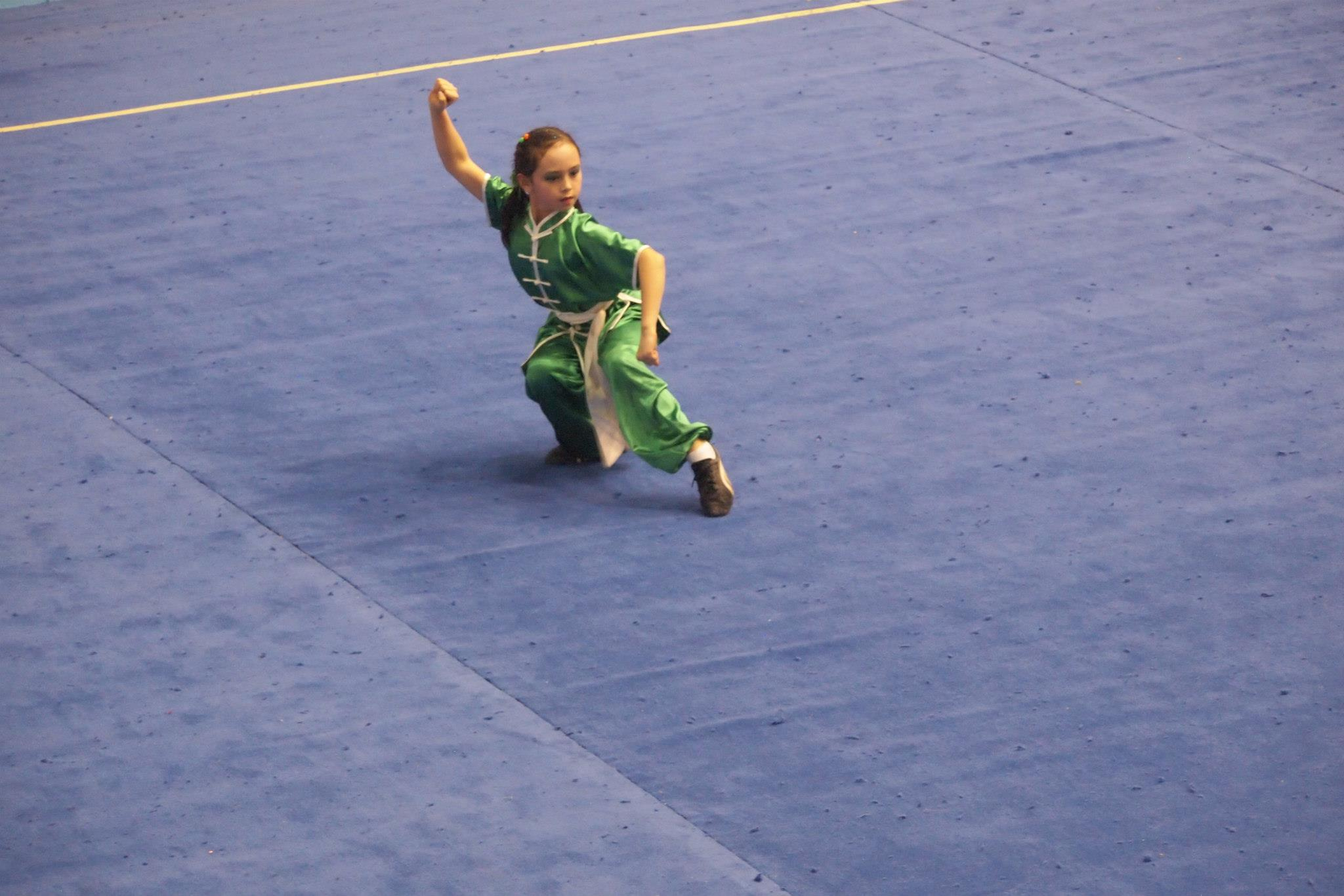 Wayland_Li_Wushu_World_Junior_Championships_2014_Turkey_Julia_1.jpg