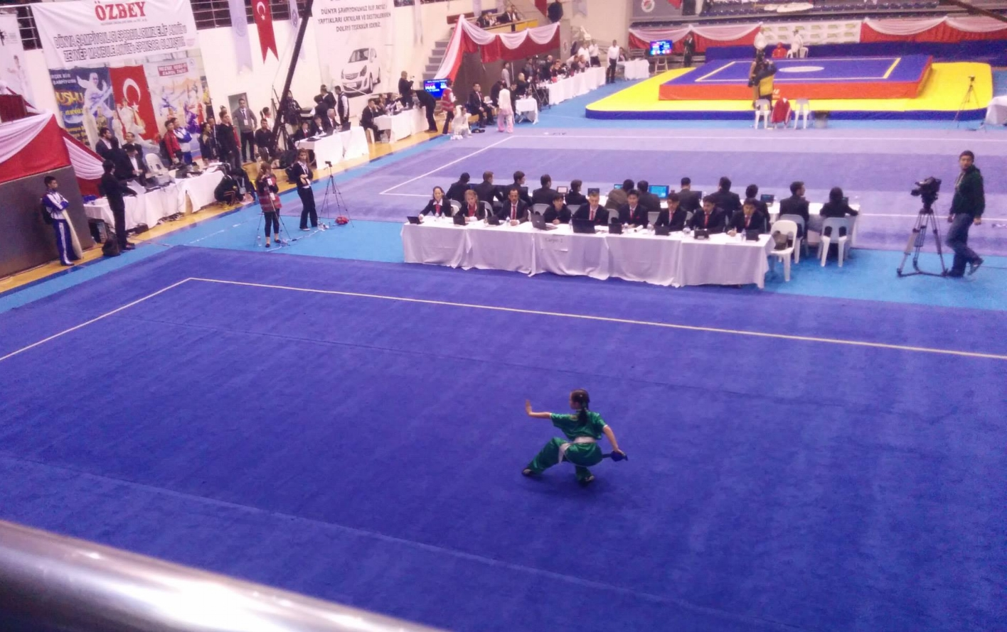 Julia_Wayland_Li_Wushu_World_Junior_Championships_Broadsword_Daoshu_2014_1.jpg
