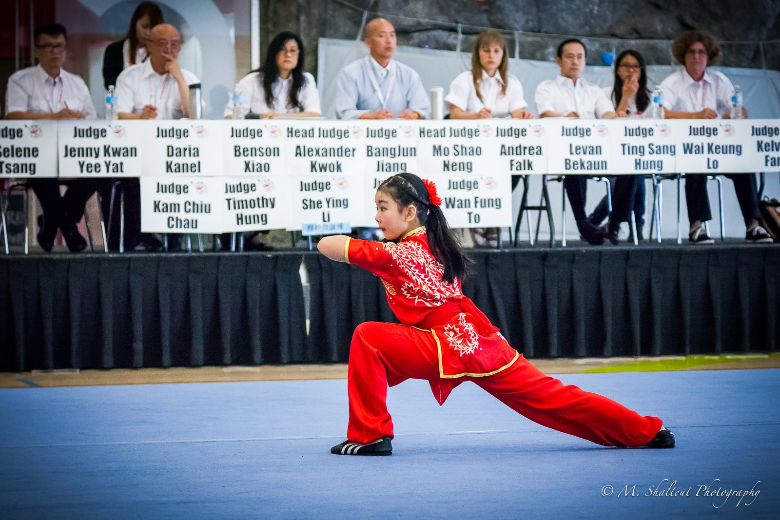 Ashley_wayland_li_wushu_Changquan_Longfist_2015_1.jpg