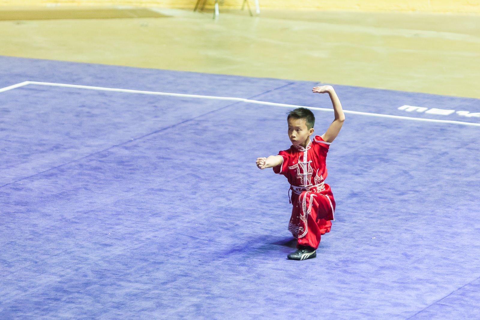 Caleb_Wayland_Li_Wushu_Changquan_Longfist_PanAm_Championships_2016.jpg