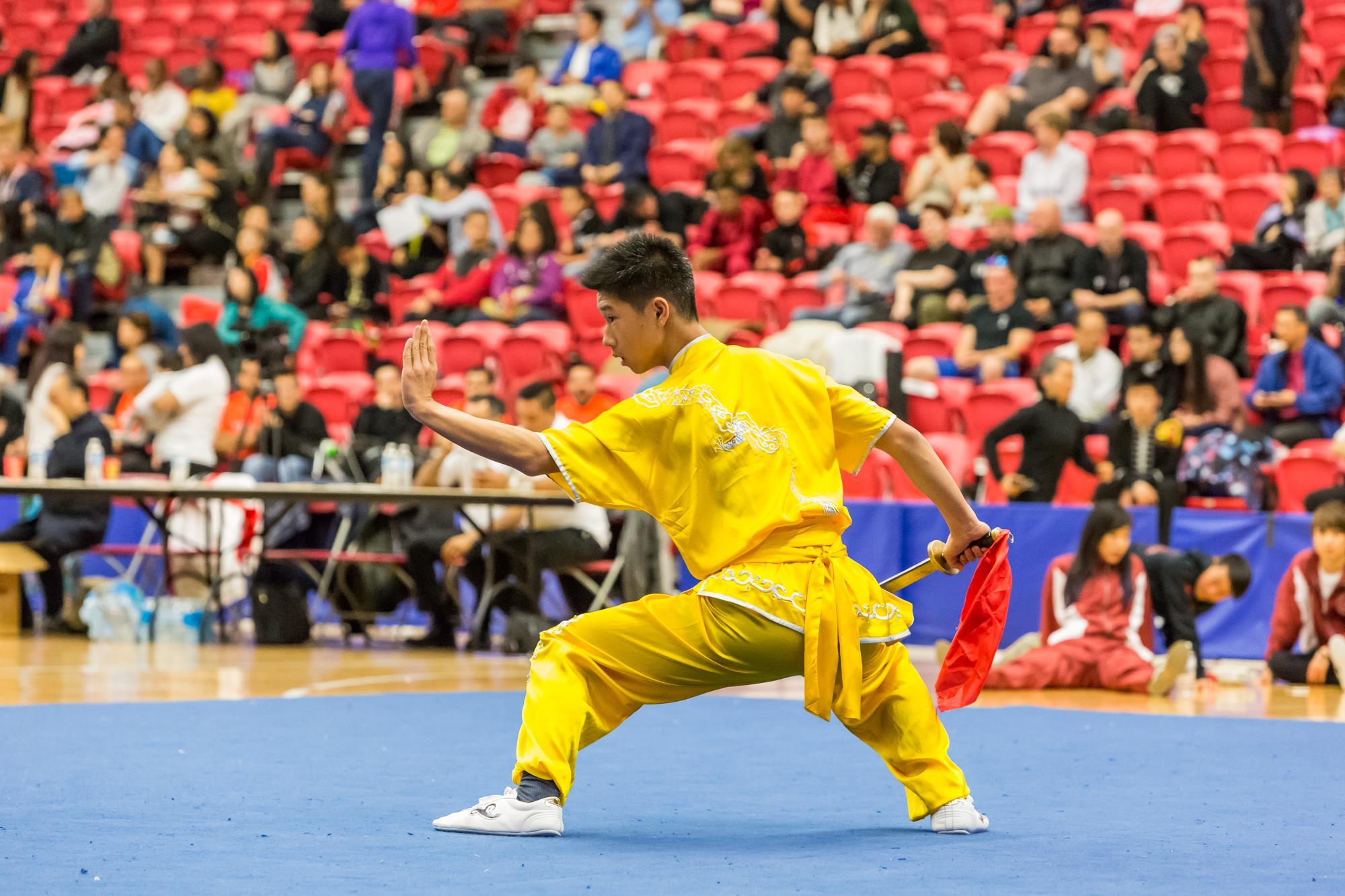 wayland-li-wushu-toronto-markham-canadian-wushu-championships-2017-daoshu-6.jpg