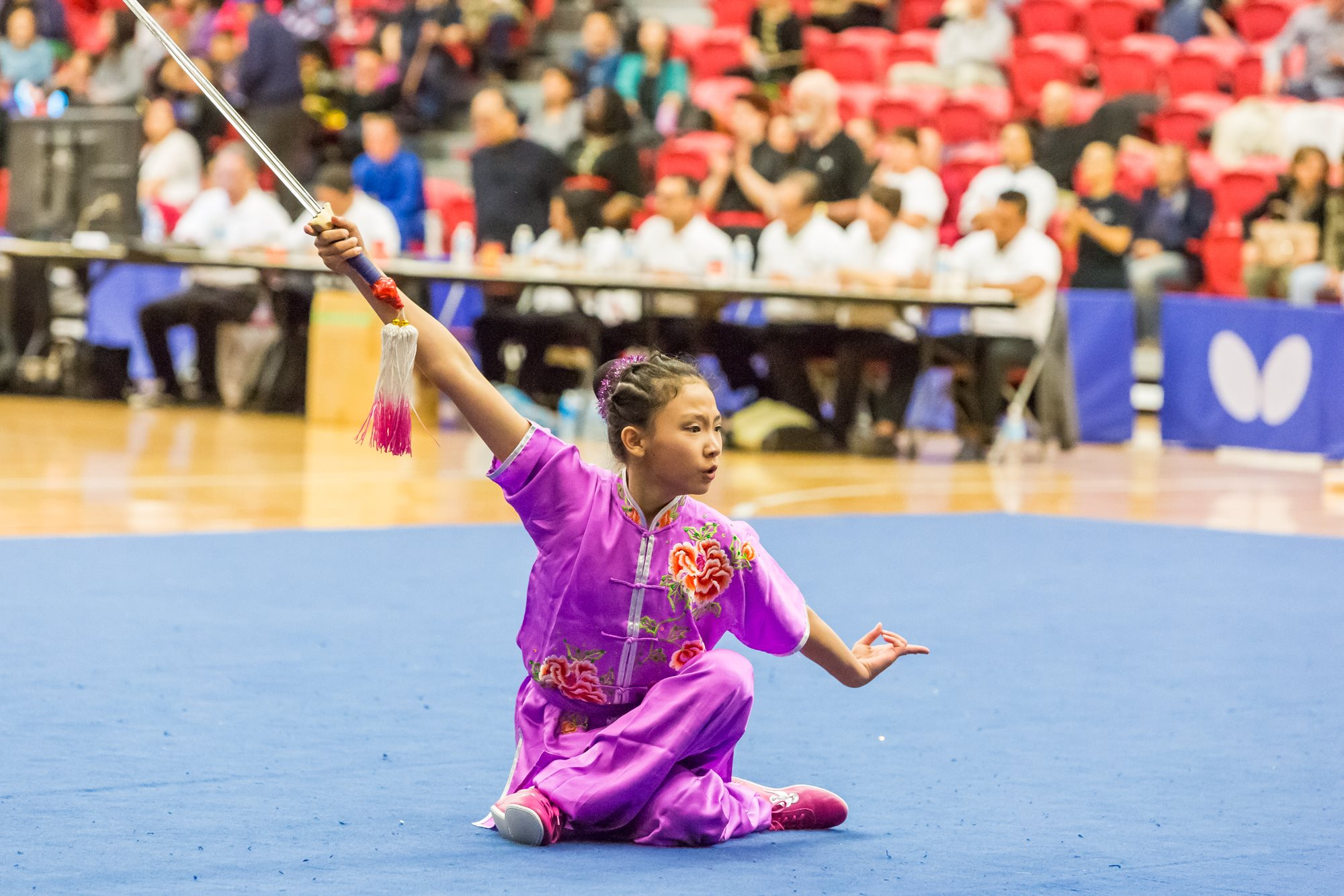 wayland-li-wushu-toronto-markham-canadian-wushu-championships-2017-jianshu-2.jpg