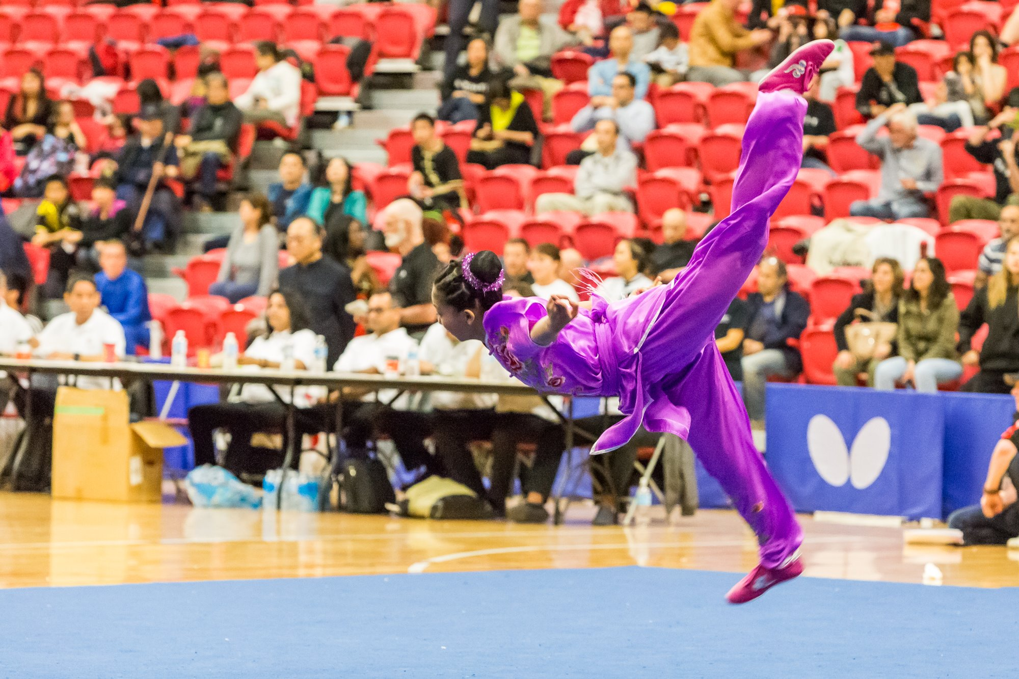 wayland-li-wushu-toronto-markham-canadian-wushu-championships-2017-jianshu-16.jpg