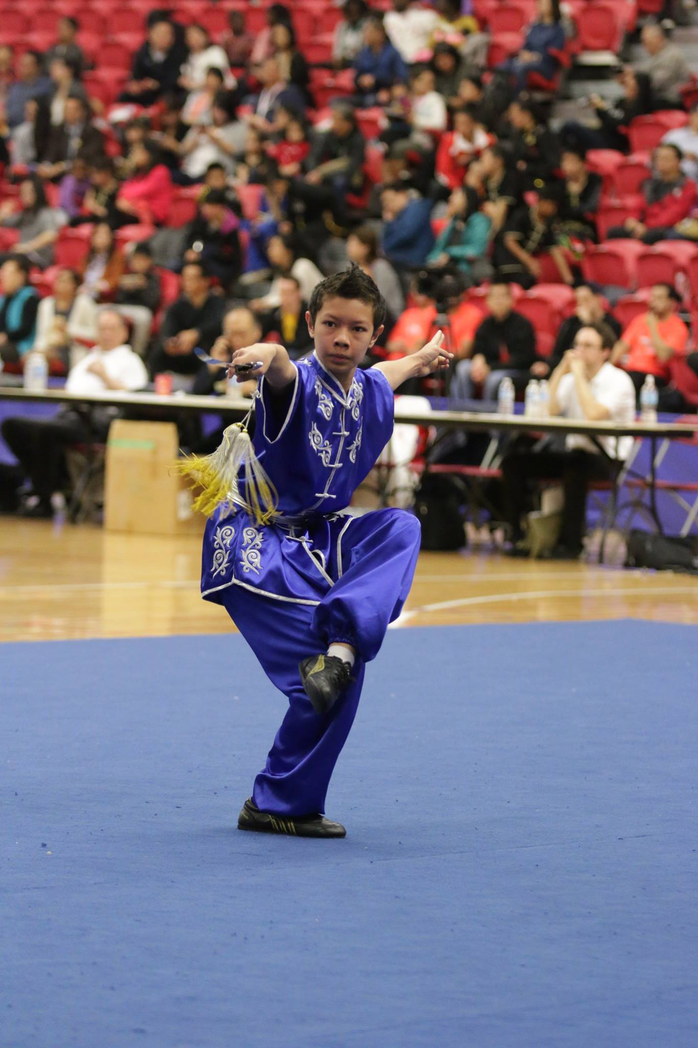 wayland-li-wushu-toronto-markham-canadian-wushu-championships-2017-jianshu-18.jpg
