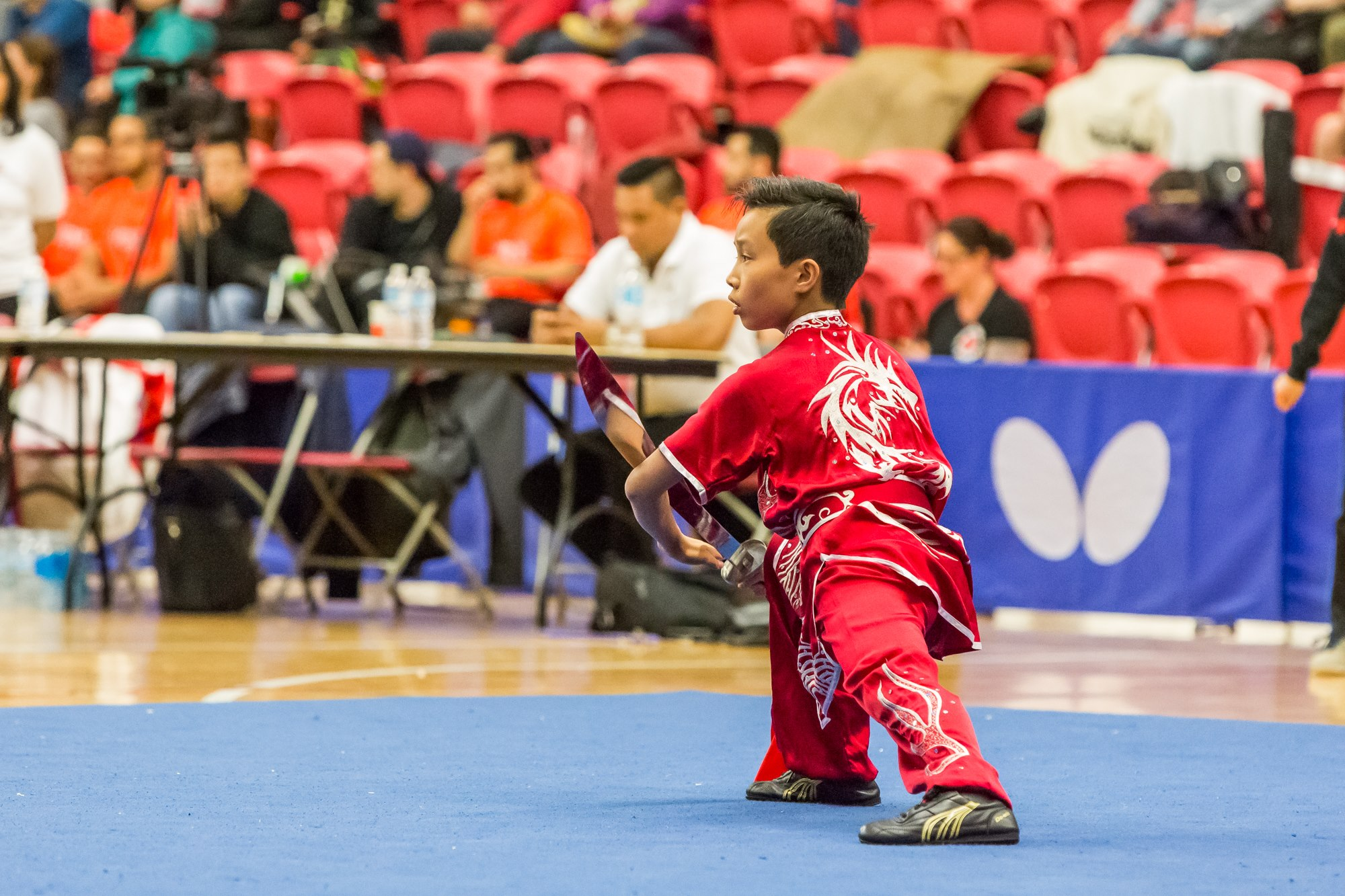 wayland-li-wushu-toronto-markham-canadian-wushu-championships-2017-daoshu-7.jpg
