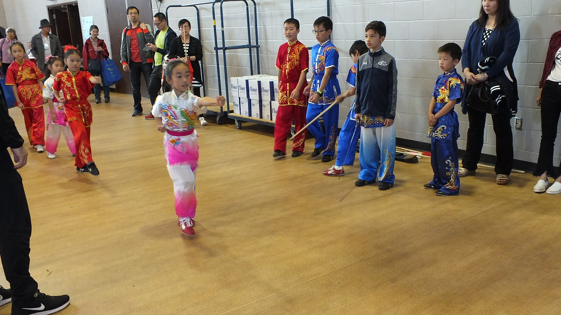 wayland-li-wushu-toronto-canada-demo-chinese-cultural-centre-health-awareness-day-2017-2.jpg
