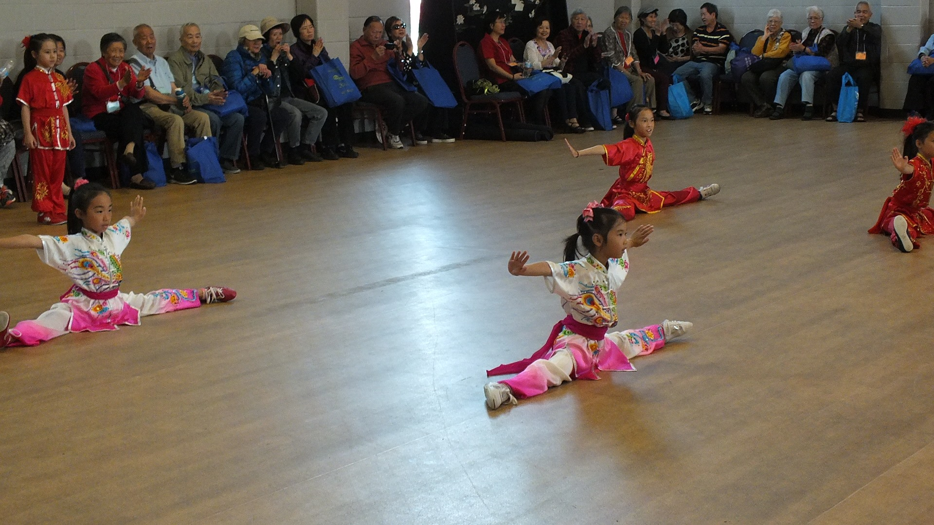 wayland-li-wushu-toronto-canada-demo-chinese-cultural-centre-health-awareness-day-2017-7.jpg