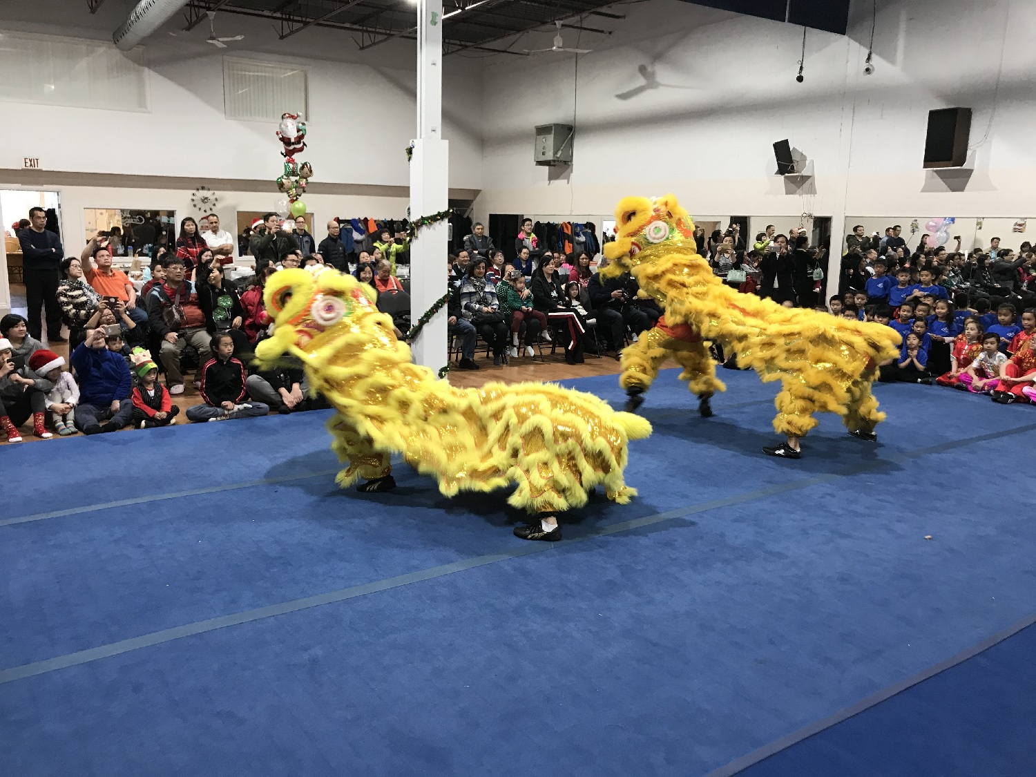 wayland-li-wushu-canada-ontario-toronto-classes-taolu-holiday-party-2017-02.jpg