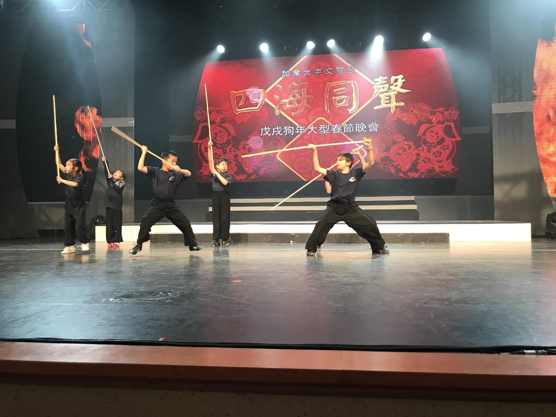 wayland-li-wushu-fairchild-toronto-spring-festival-gala-2018-21.jpg