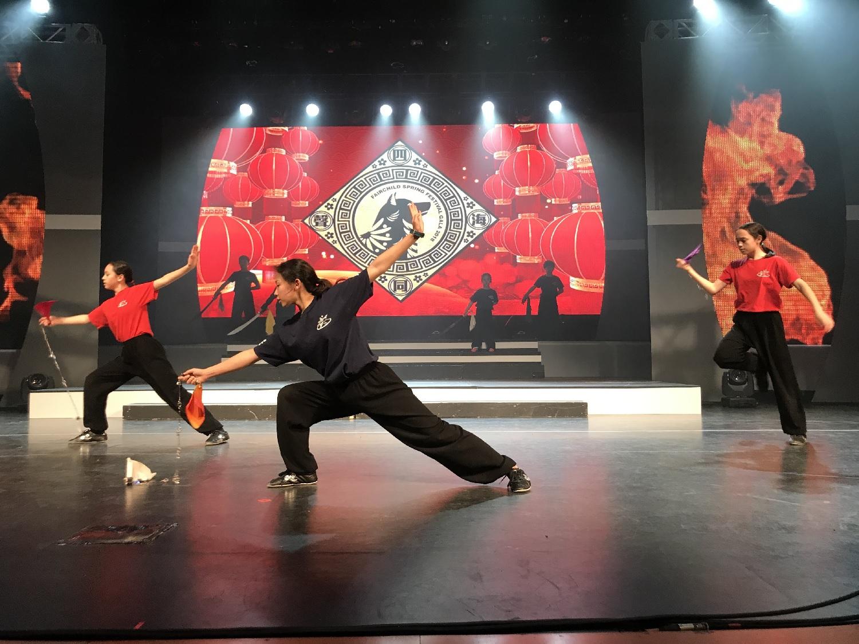 wayland-li-wushu-fairchild-toronto-spring-festival-gala-2018-22.jpg