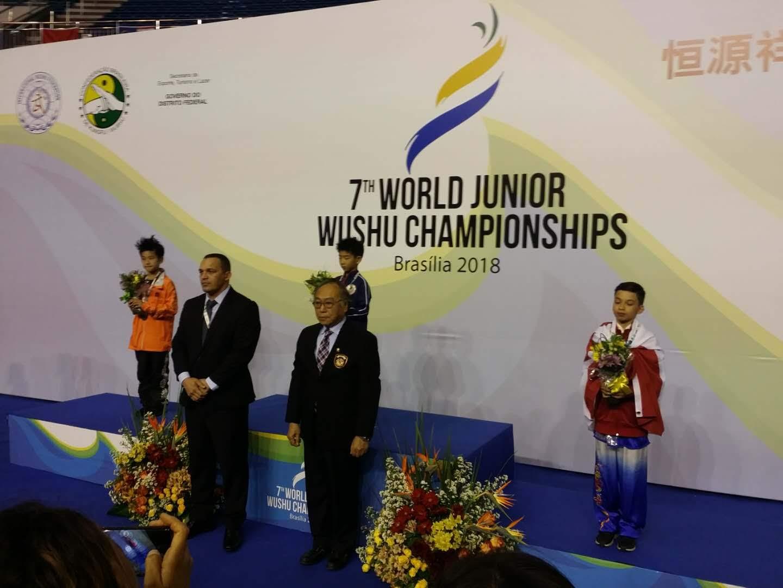 wayland-li-wushu-world-junior-wushu-brazil-team-canada-2018-09.jpg