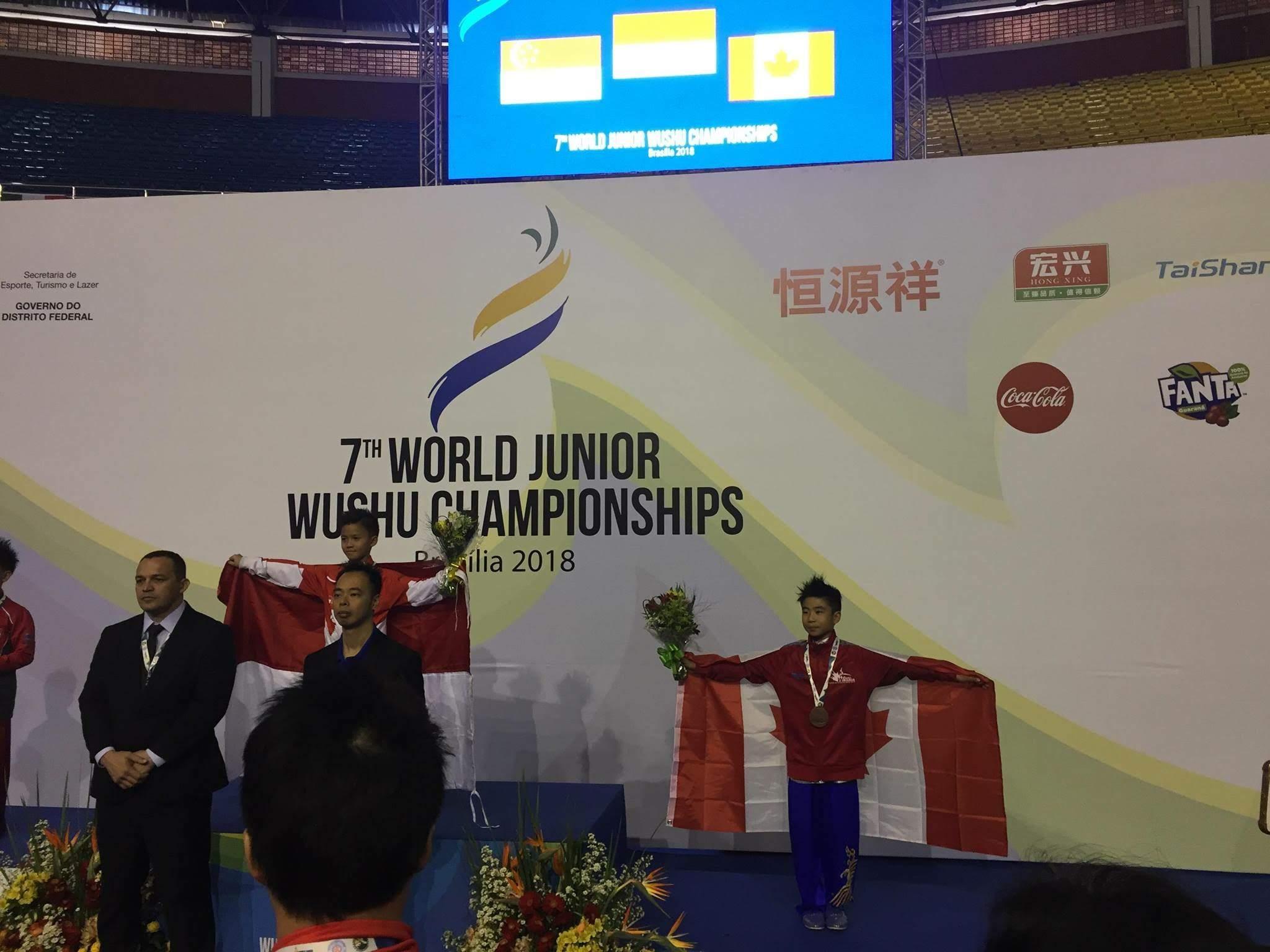 wayland-li-wushu-world-junior-wushu-brazil-team-canada-2018-17.jpg