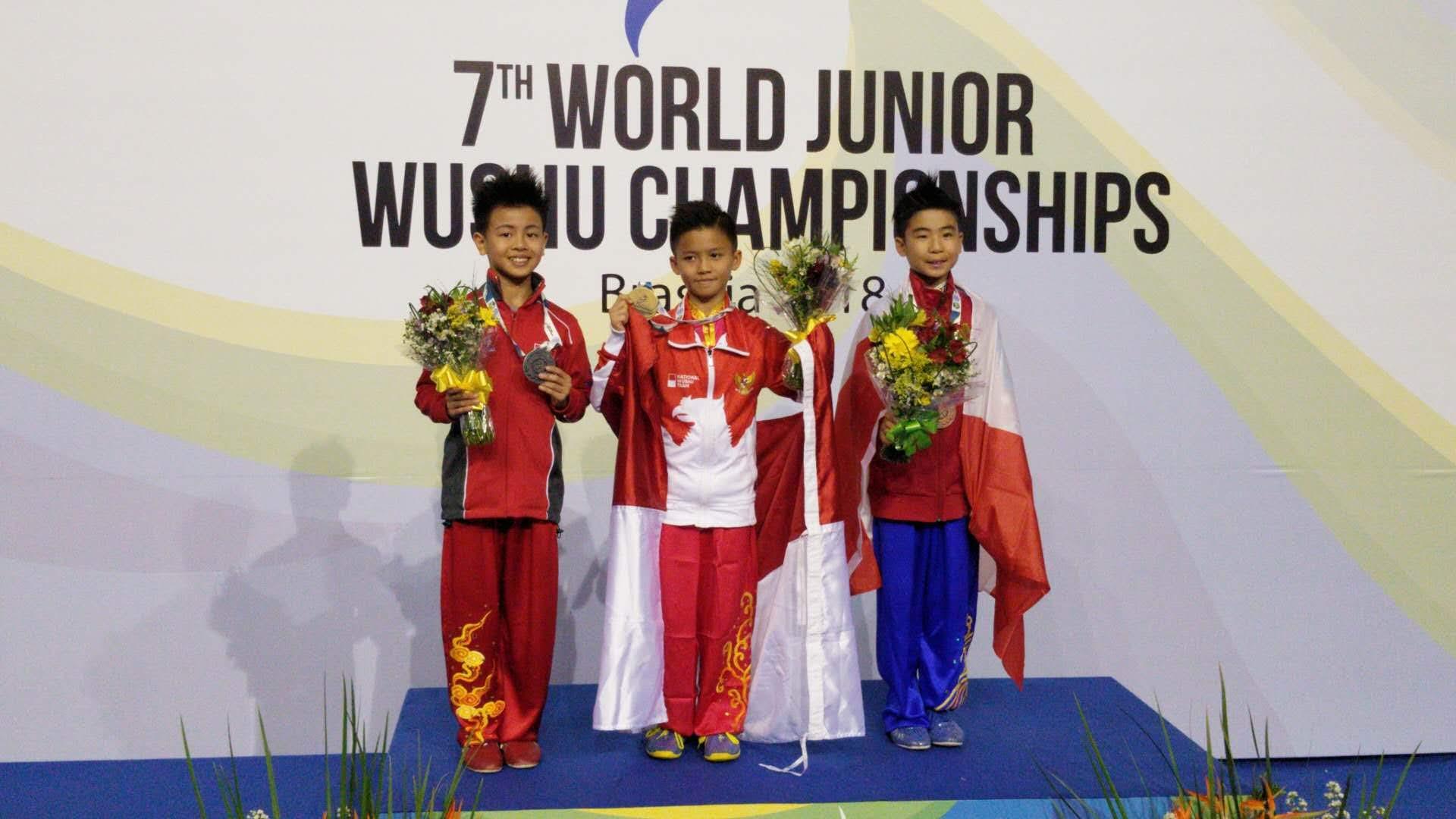 wayland-li-wushu-world-junior-wushu-brazil-team-canada-2018-22.jpg