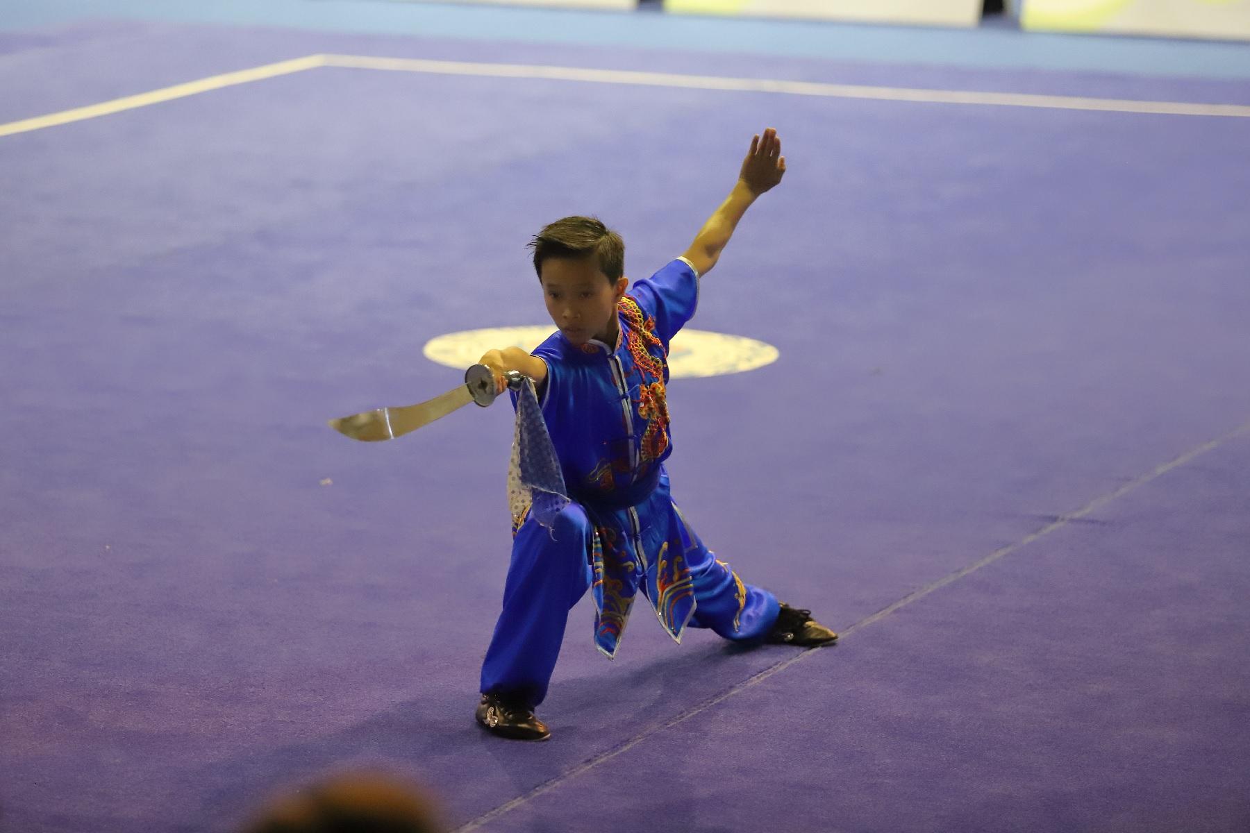 wayland-li-wushu-brazil-world-junior-wushu-championships-2018-team-canada-22.jpg