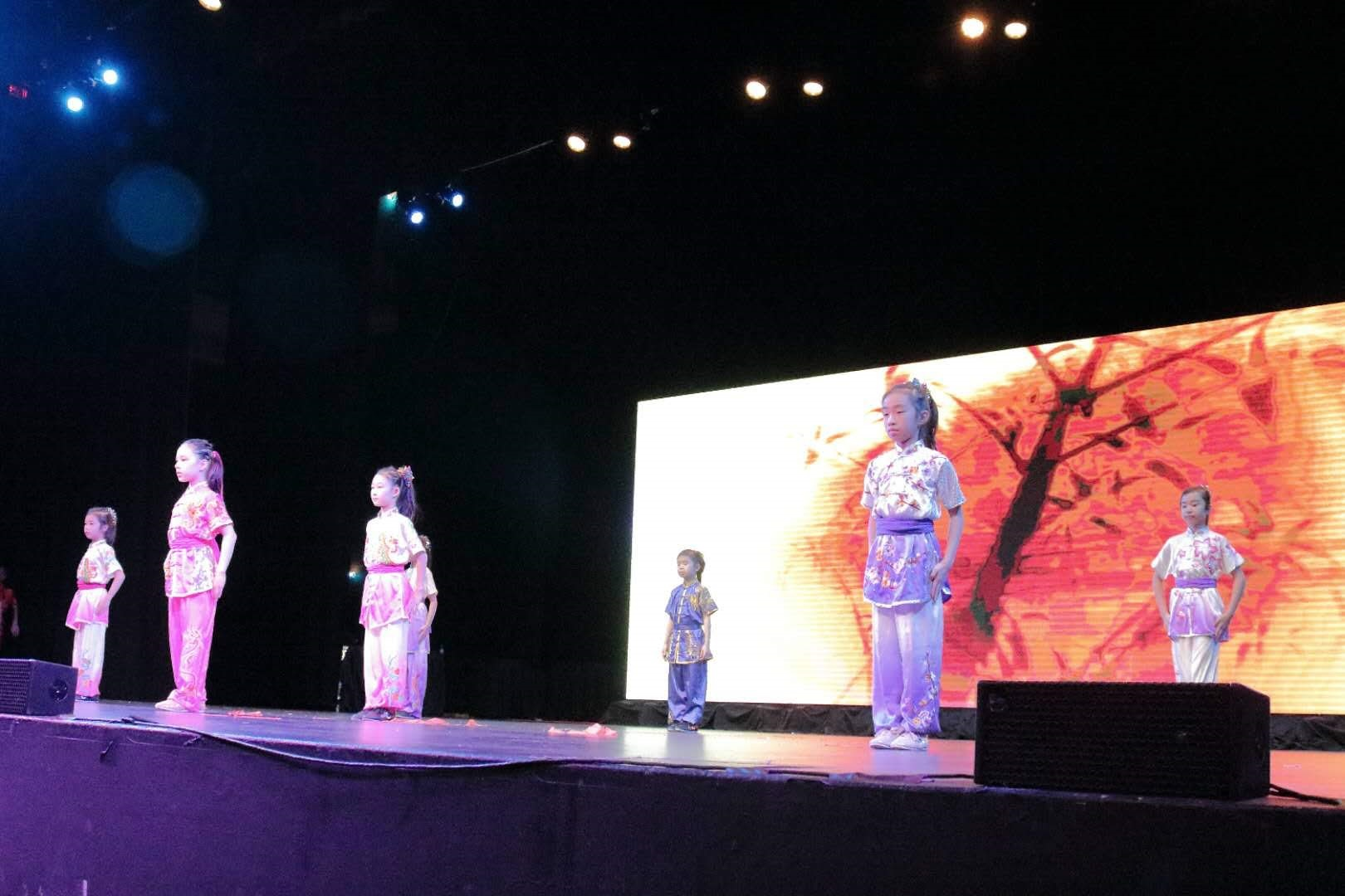 wayland-li-wushu-children-spring-fesitval-toronto-canada-2019-16.jpg