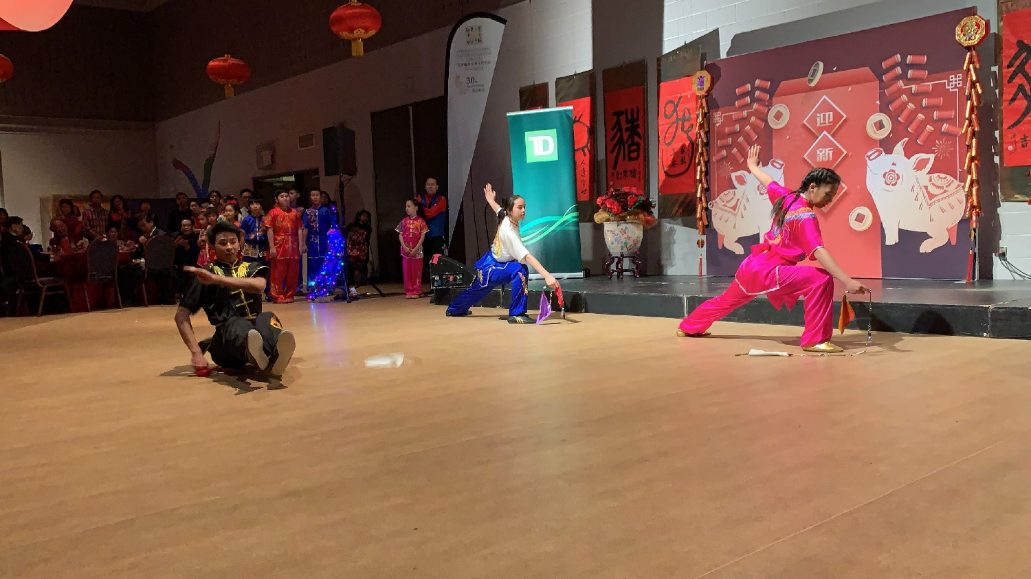 wayland-li-wushu-year-of-the-pig-dinner-chinese-cultural-centre-2019-06.jpg
