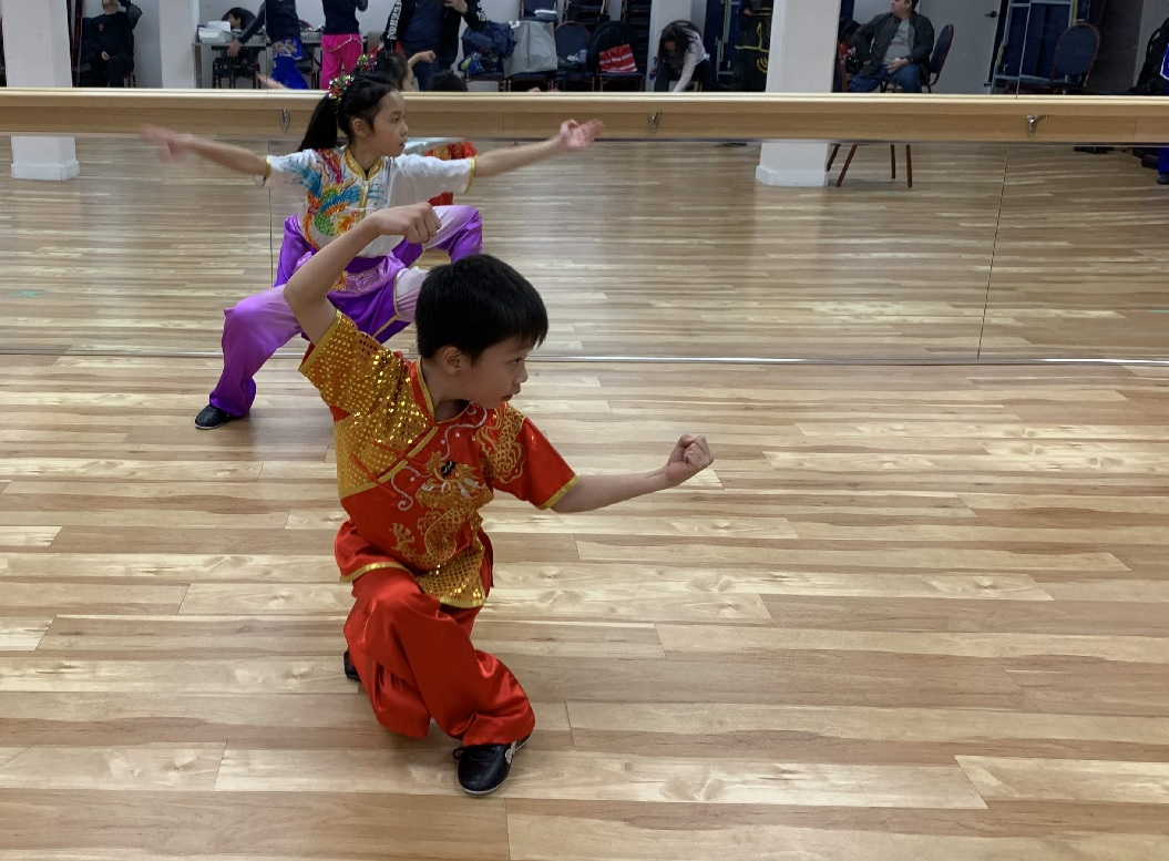 wayland-li-wushu-year-of-the-pig-dinner-chinese-cultural-centre-2019-15.jpg