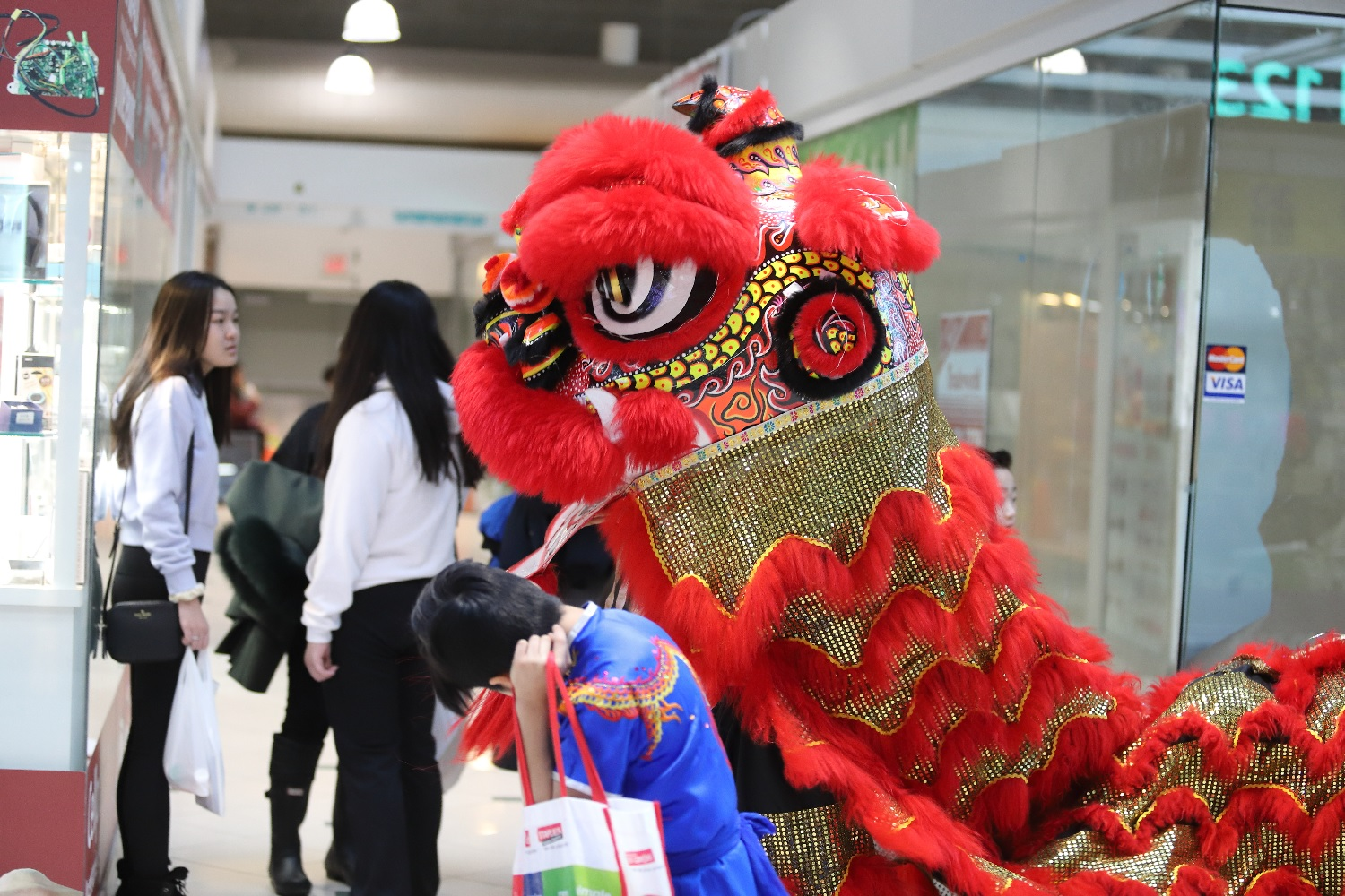 wayland-li-wushu-pacific-mall-chinese-new-year-2019-18.jpg