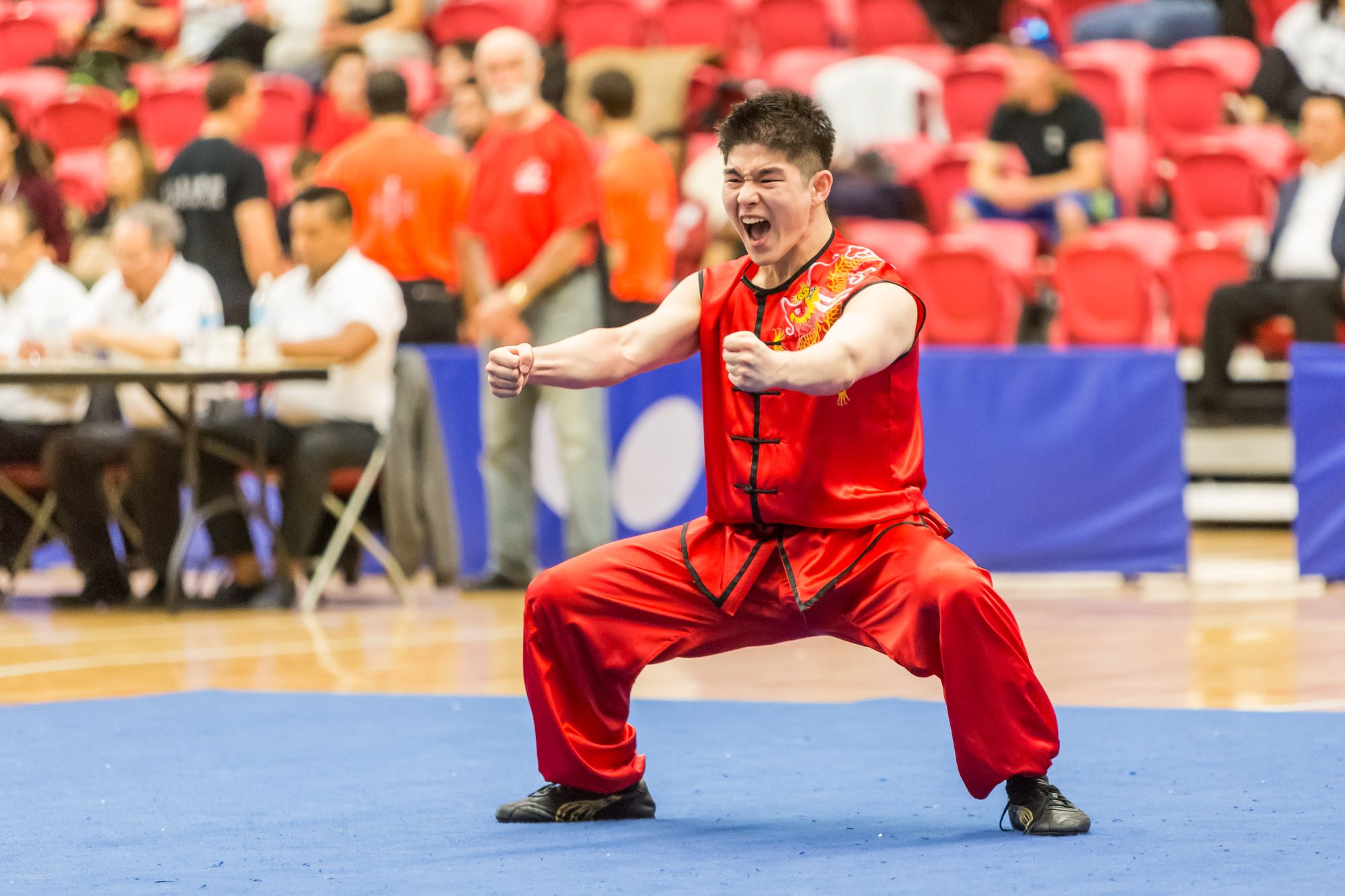 wayland-li-wushu-toronto-markham-canadian-wushu-championships-2017-nanquan-2.jpg