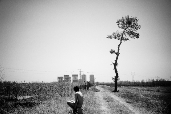 2. Liu Tao  - Hungry Beijing n-¦2, 2013.jpg