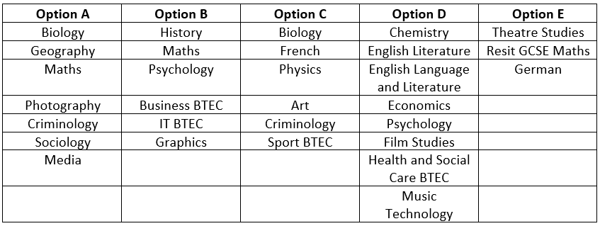 Options year 13.PNG