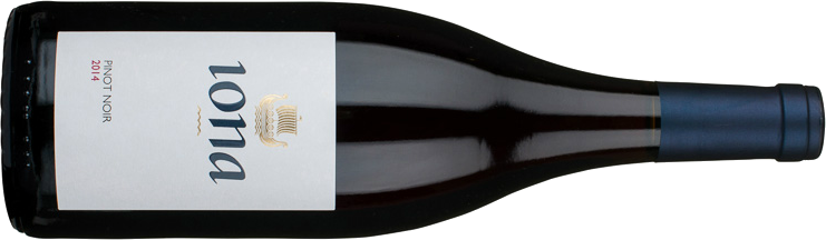 Iona Pinot Noir.png