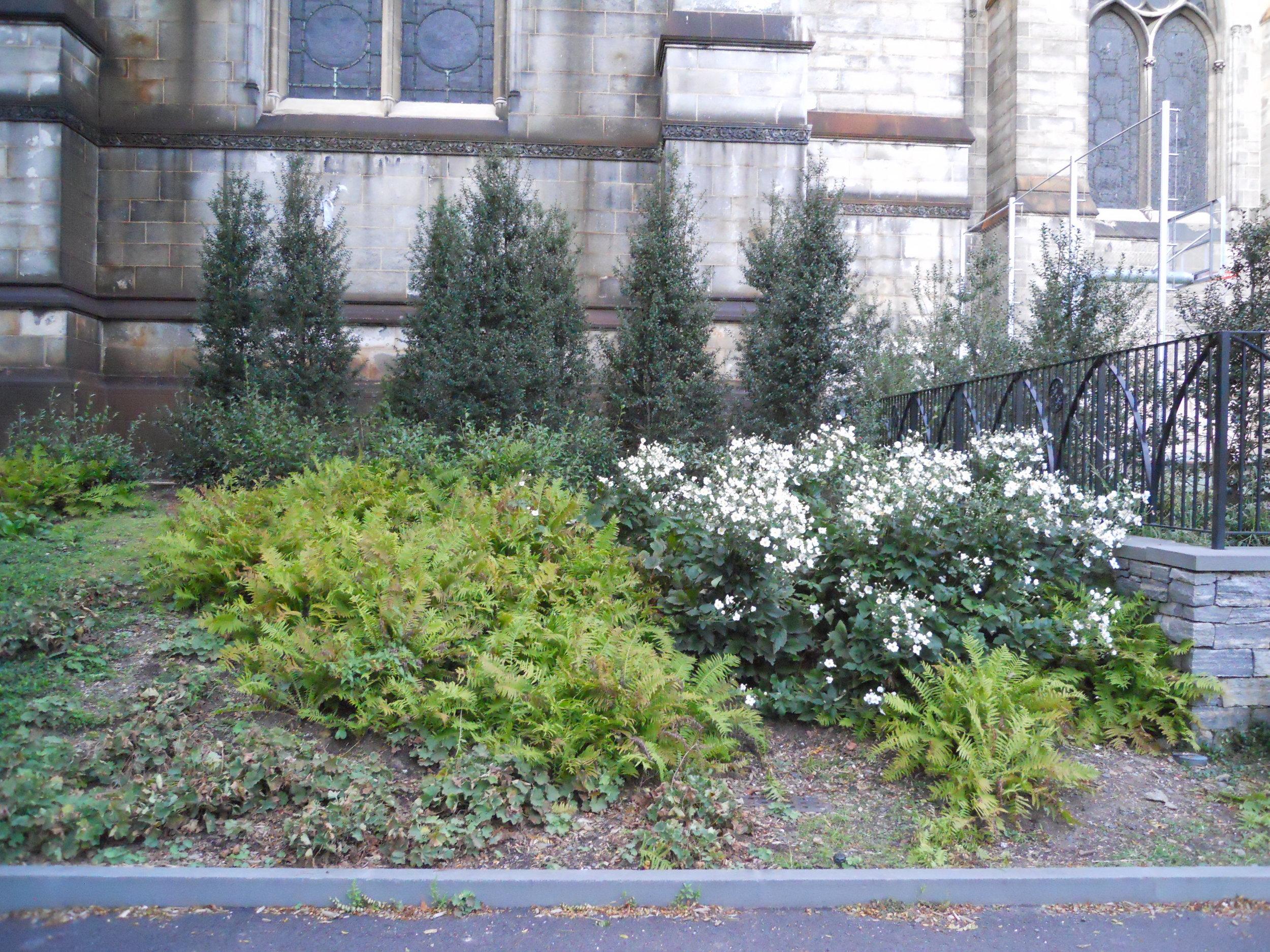 Cathedral playground garden 3.JPG
