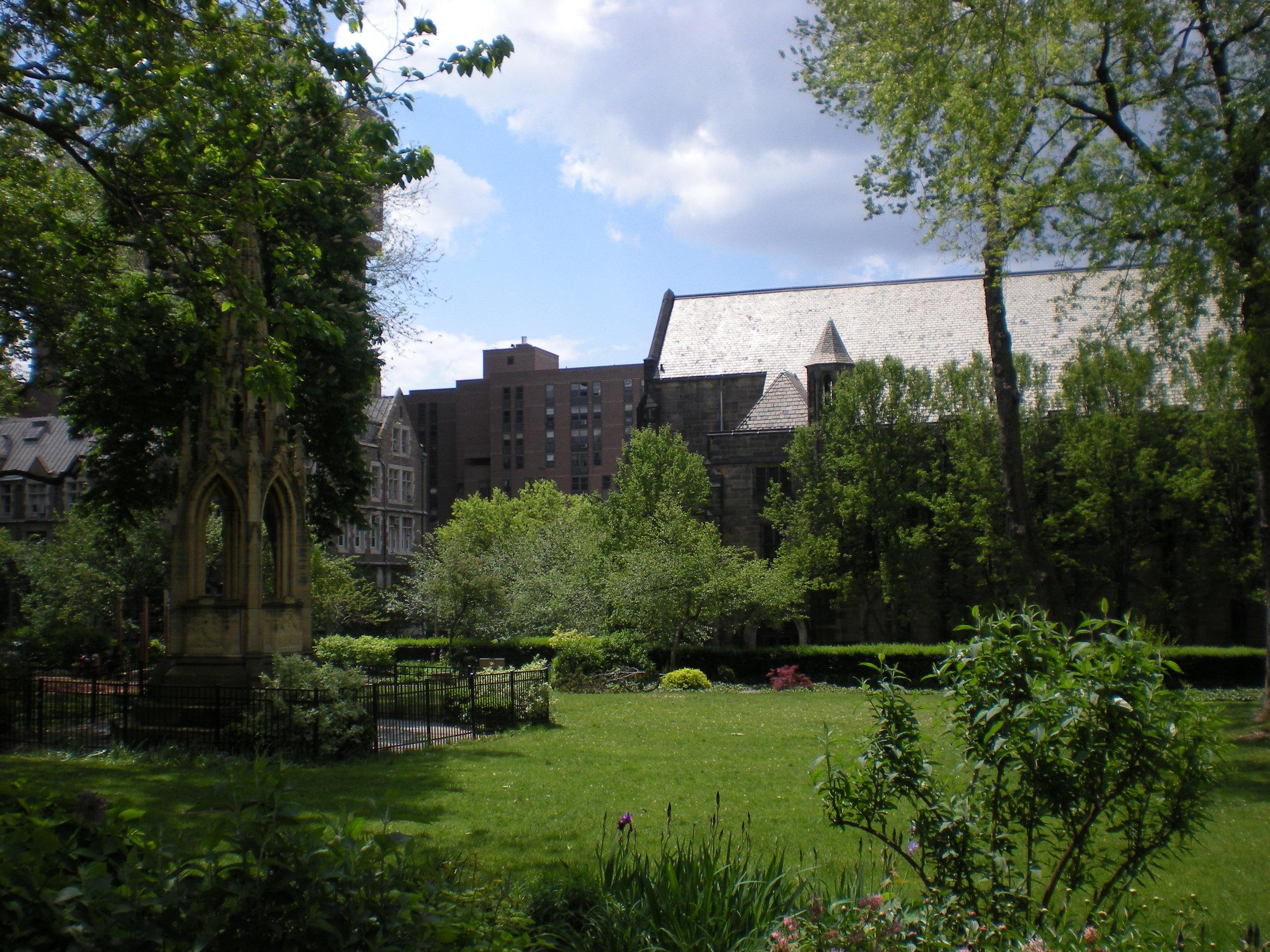 Cathedral garden 3.JPG