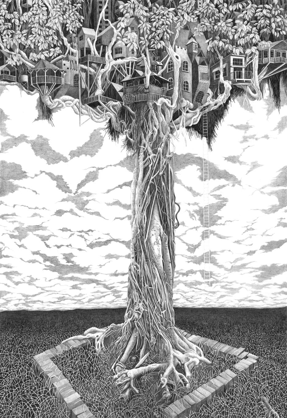 Tree House Ficus Microcarpa