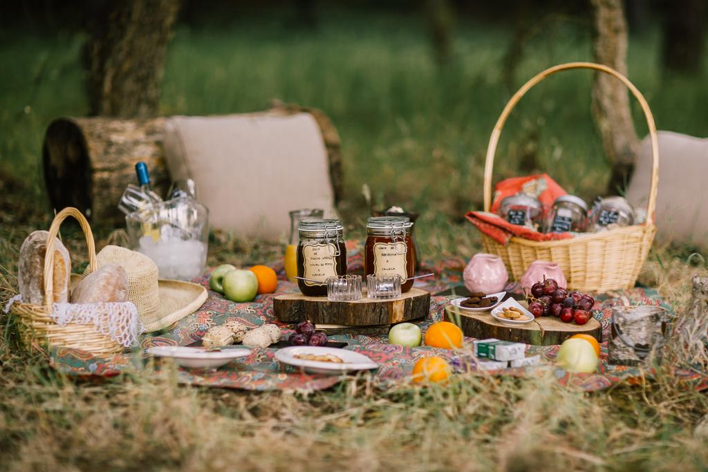 Art-cafe-home-gallery-picnic.jpg