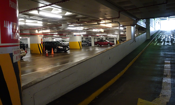 Confidential Federal Client: Consulting Services for a Parking Control System   Assess Parking Business Rules  Identify Needed Improvements  Survey PARCS Technologies
