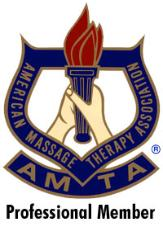 AMTA_Professional_Logo.jpg