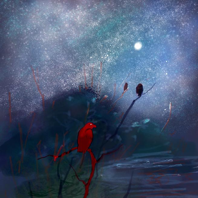 nightbirds2SMALL.jpg