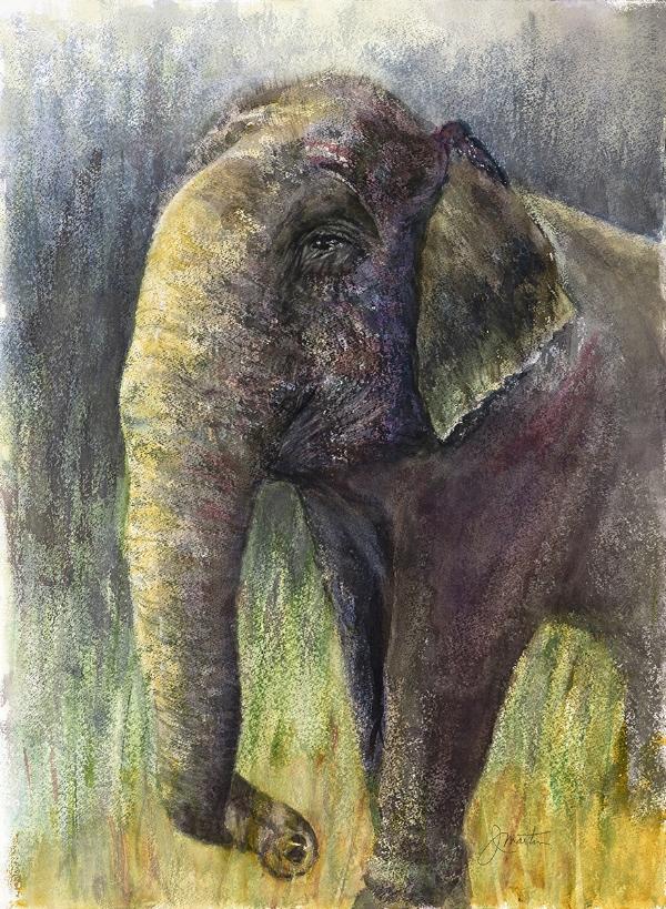 Judy Martin Elephant.jpg