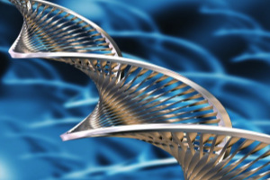 DNA-1500x1125-Creative-Commons-16930614919_6fba423a1f_o-300x225.jpg