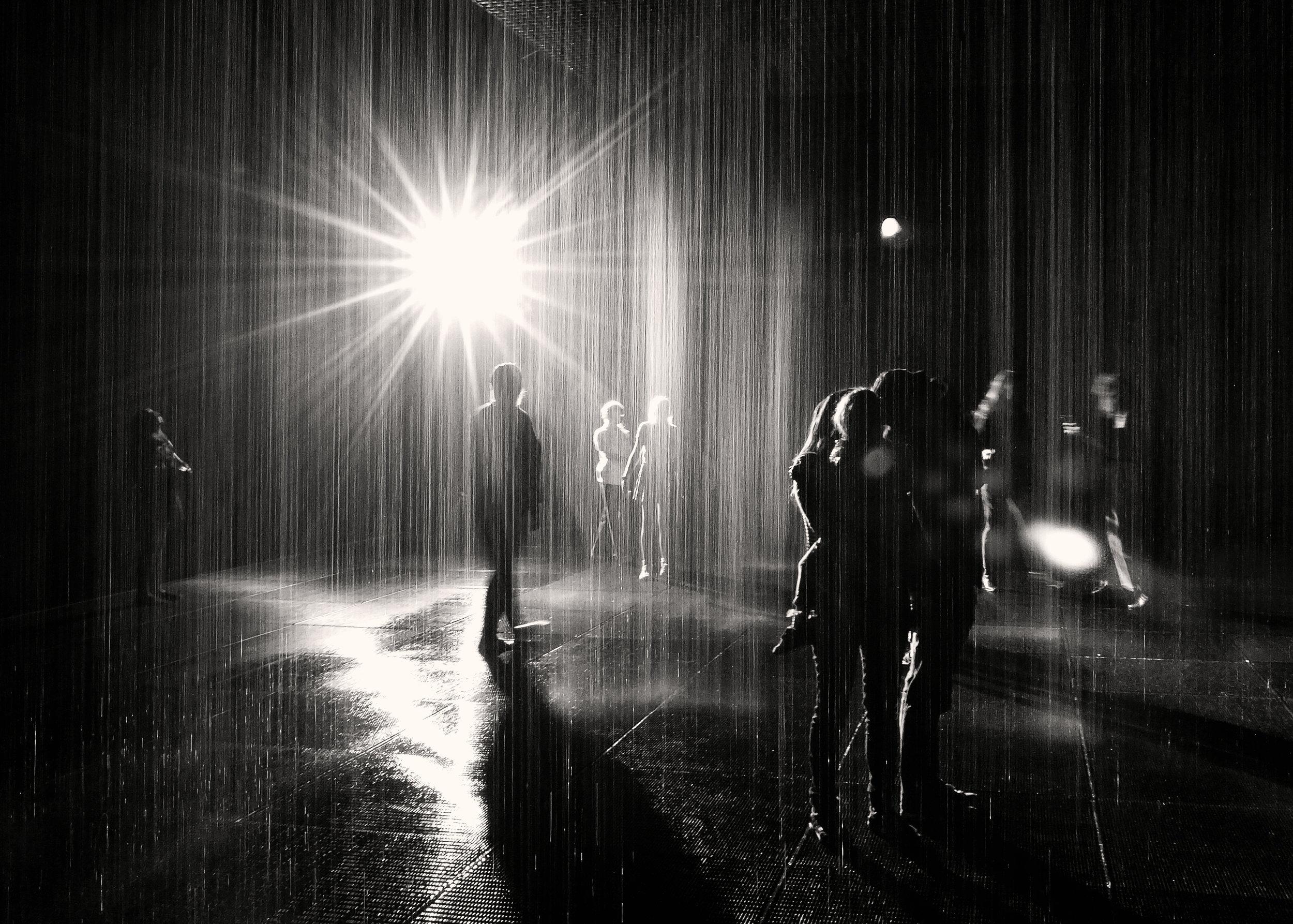 rainroom cBW.jpg