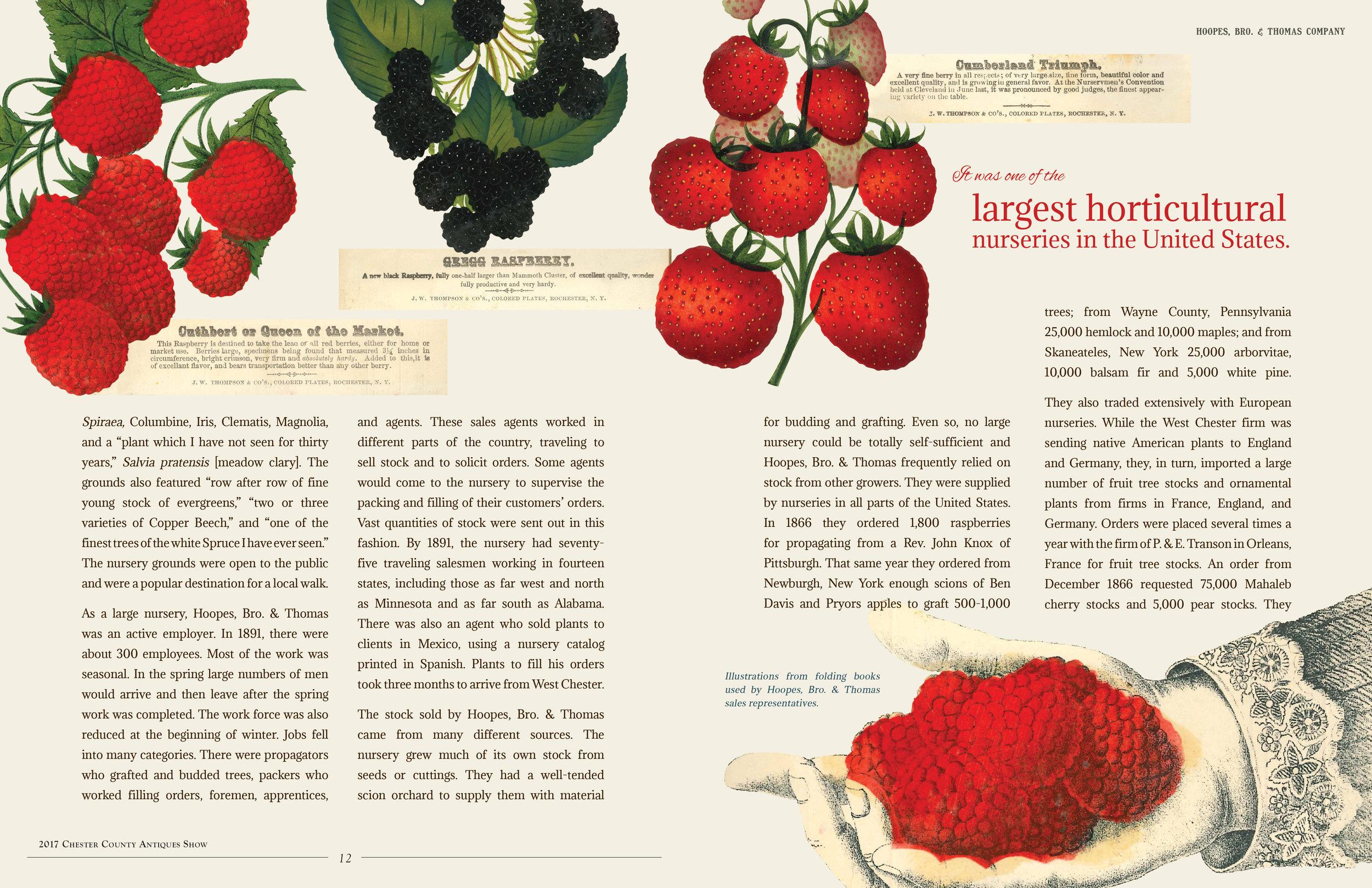 CCHS-Botany-spread2.jpg