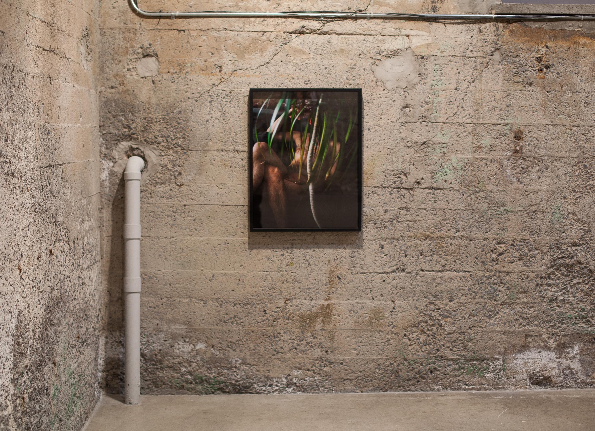 Exhibition at Parisian Laundry