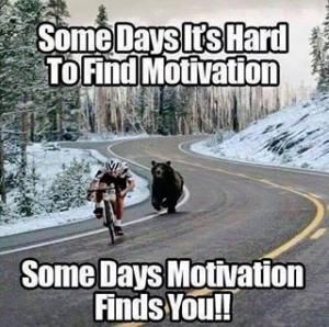 Want to find motivation without a bear chasing you? Keep Reading!