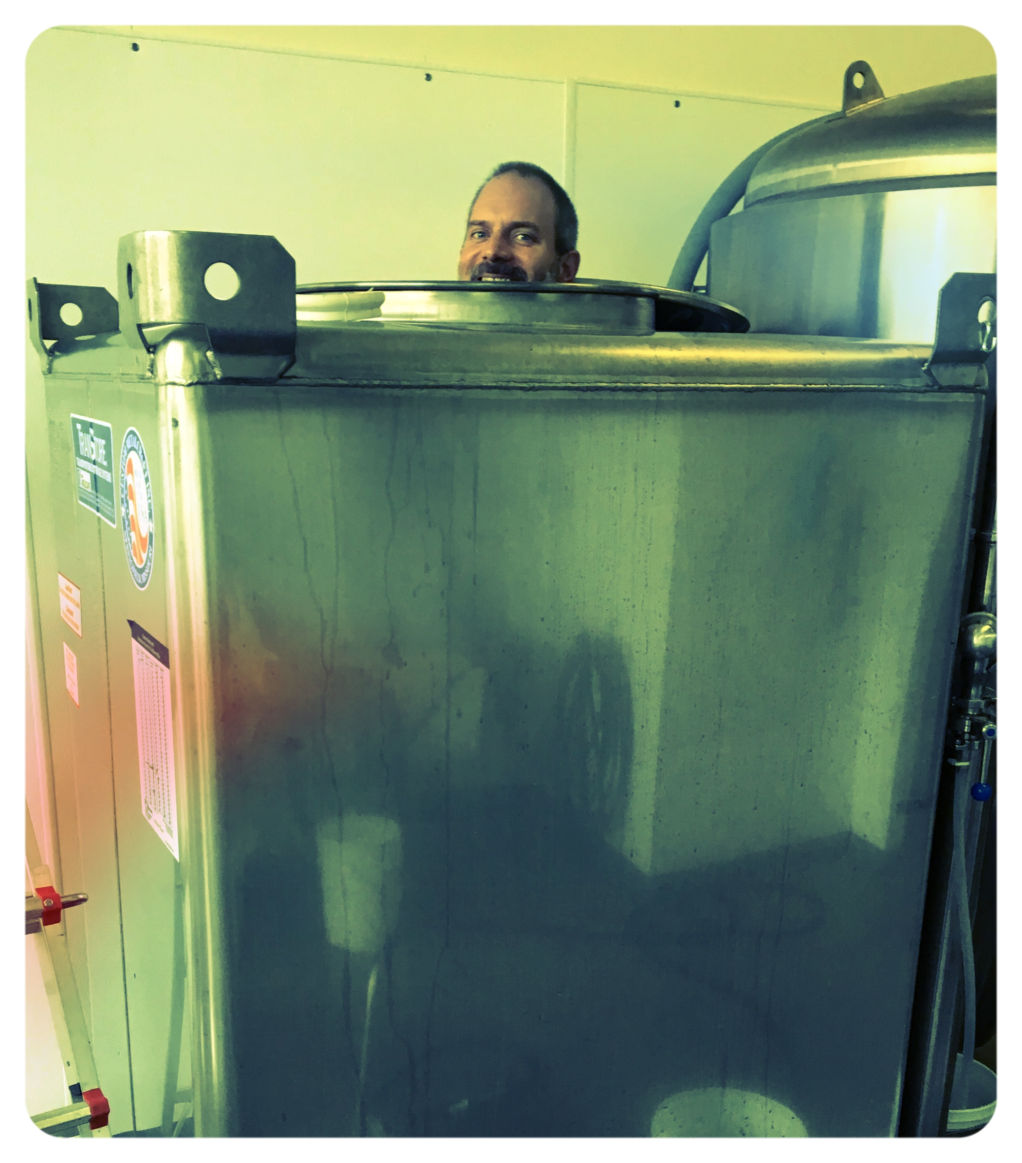 Above: Paul in a fermentation tank (don't worry, he didn't go swimming in our cider... or at least we don't think he did)