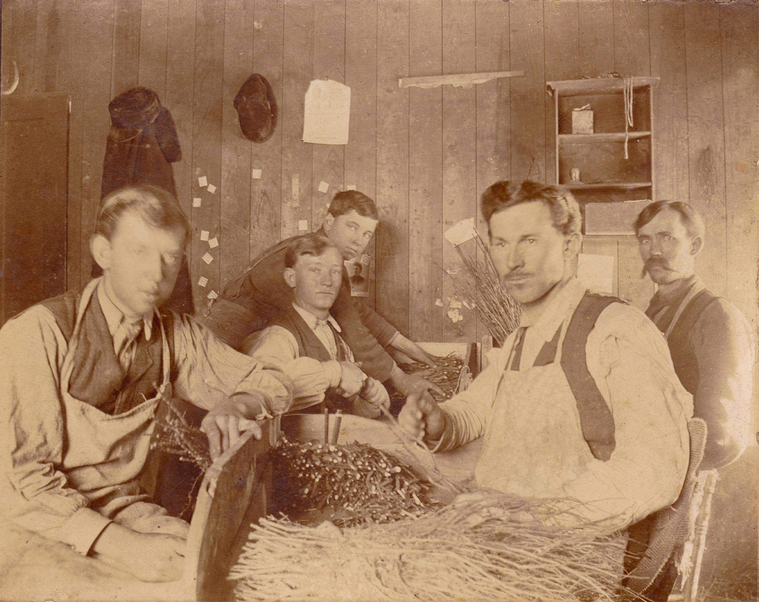 Above: Green Hill Nursery in Milton, Wisconsin circa 1875, showing men grafting apples. One of the men pictured, John Plumb, was the son of Joab Plumb who likely planted the first Plumb Cider Apple in Wisconsin.