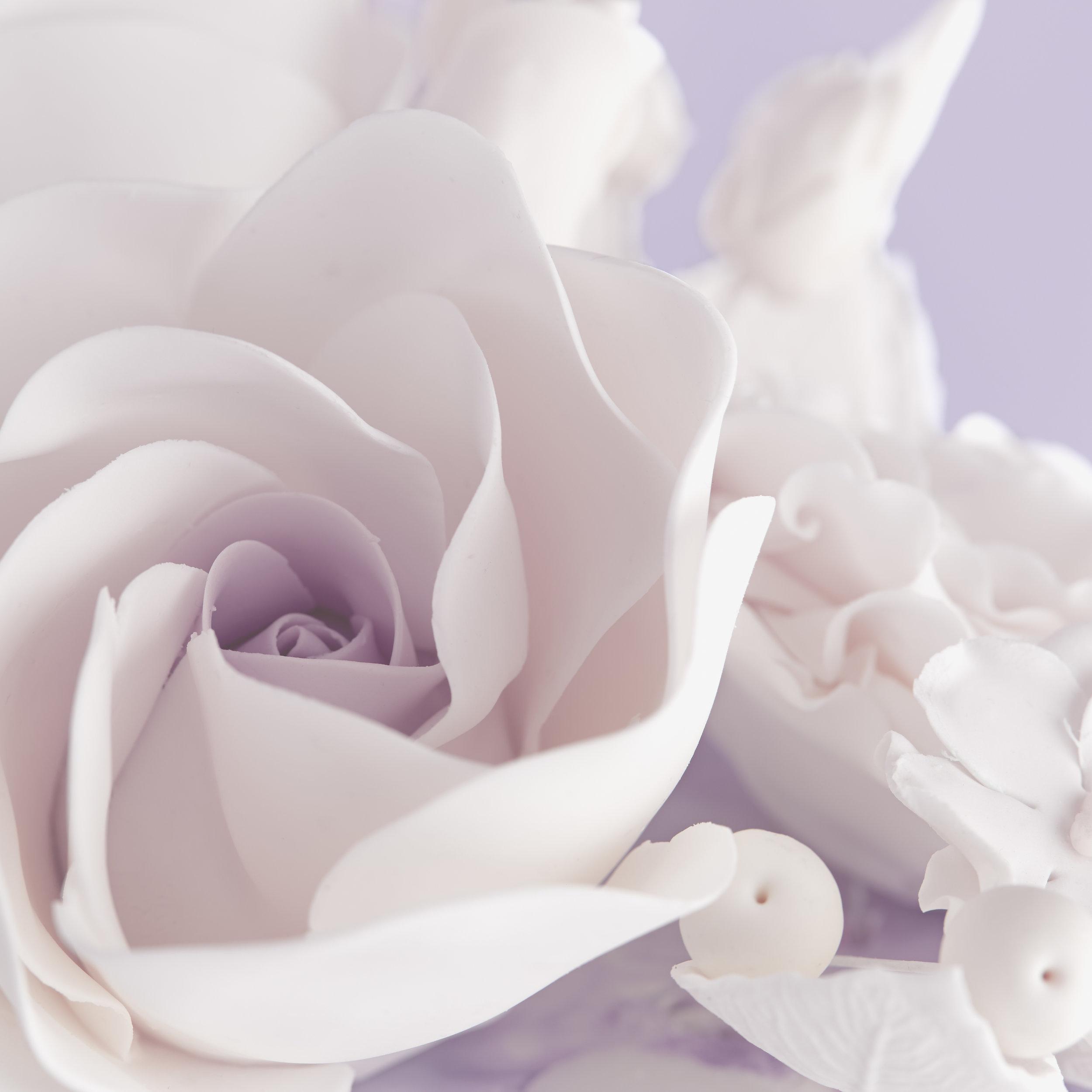 Whimsical Roses