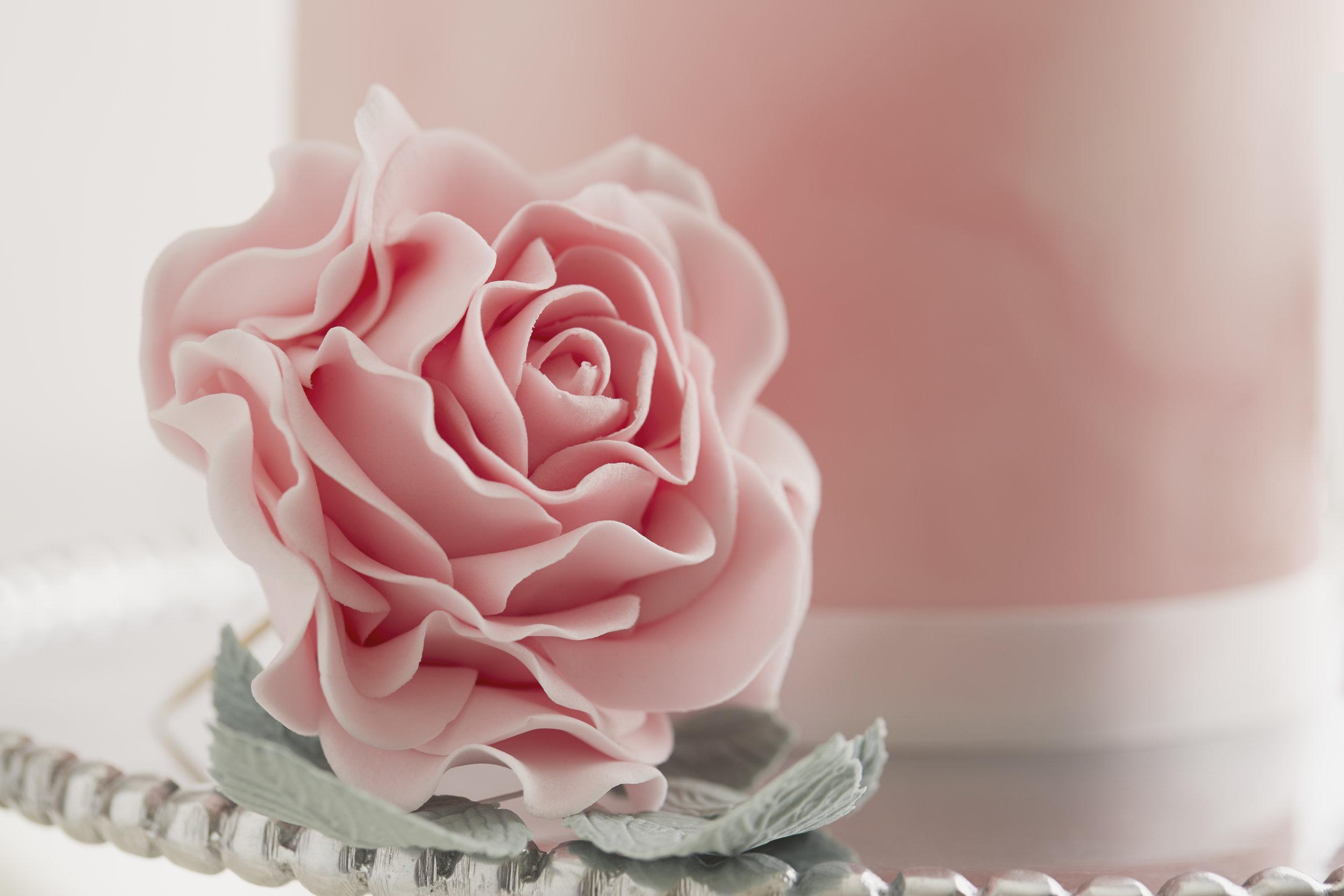 cakes-thepinkkitchen_sugarrose.jpg