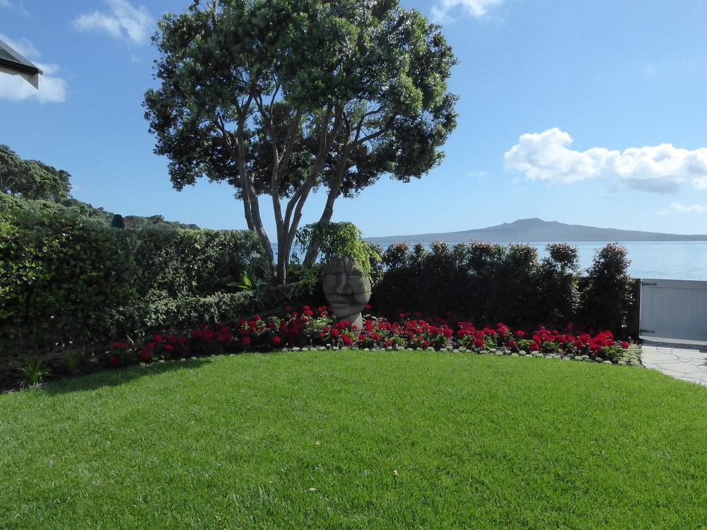 Stunning Coastal Garden