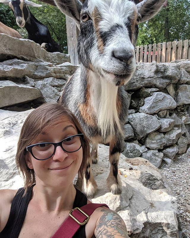 Did a zoo scavenger hunt at work today. I got to pet goats, I had a good day.