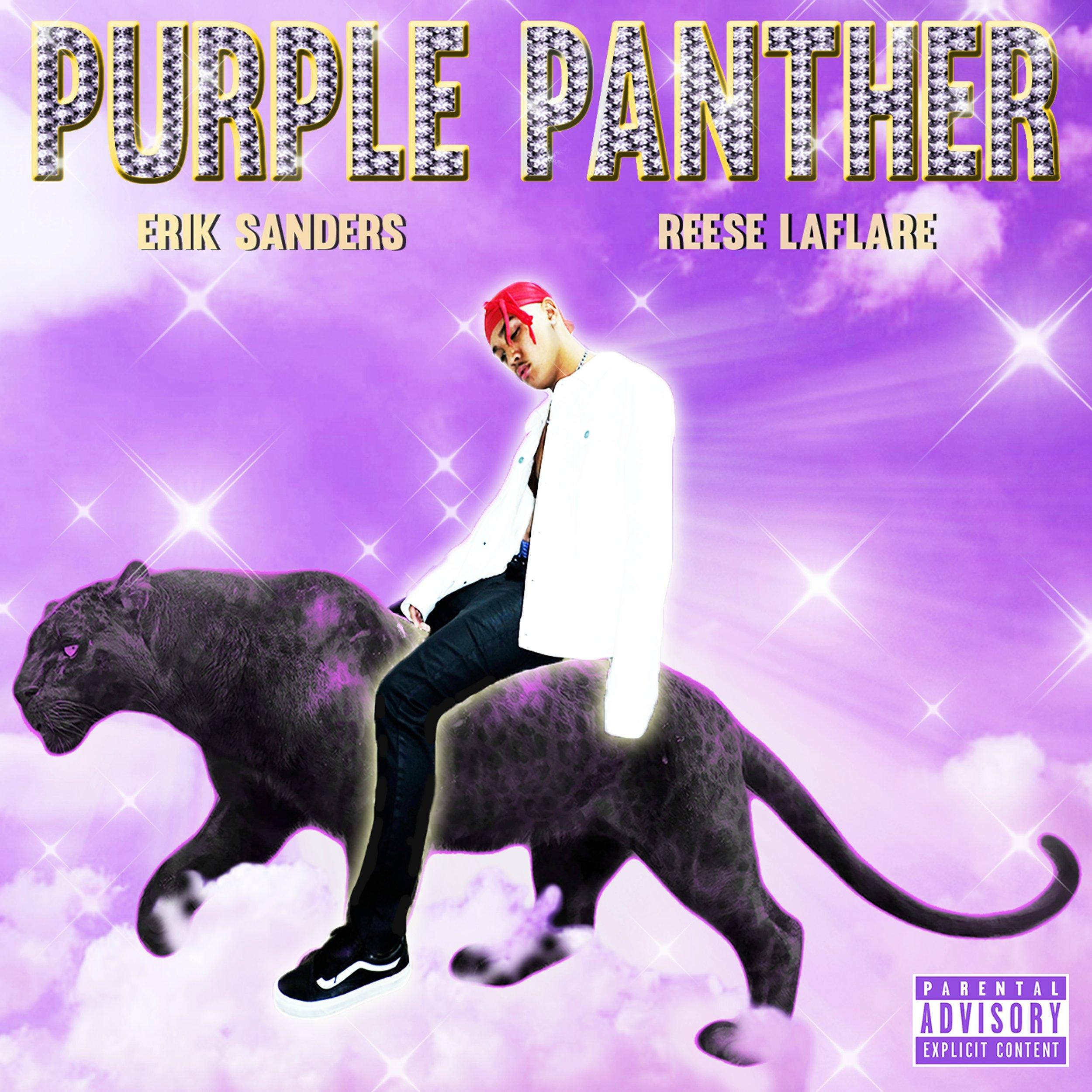 WVS017 - Erik Sanders - Purple Panther - Artwork.jpg