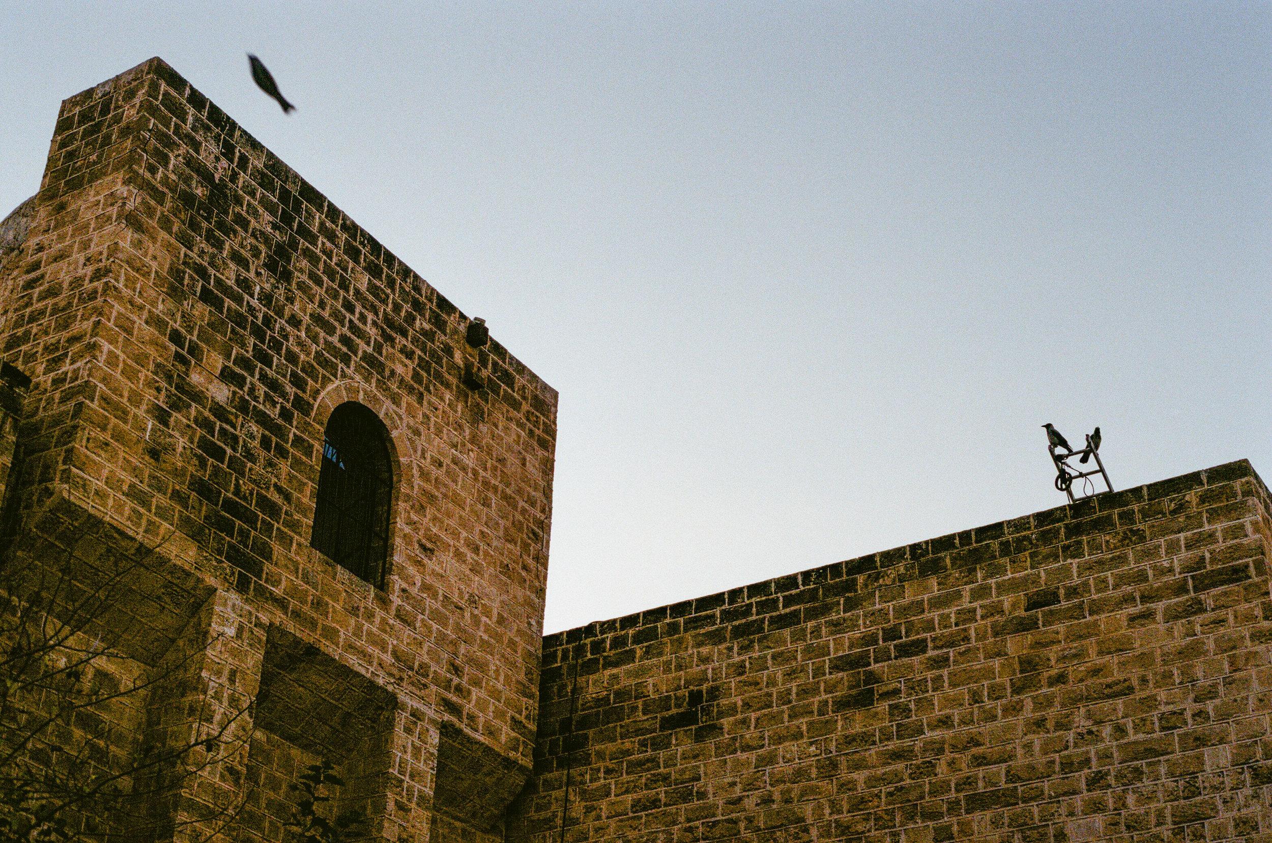 Israel 163.jpg